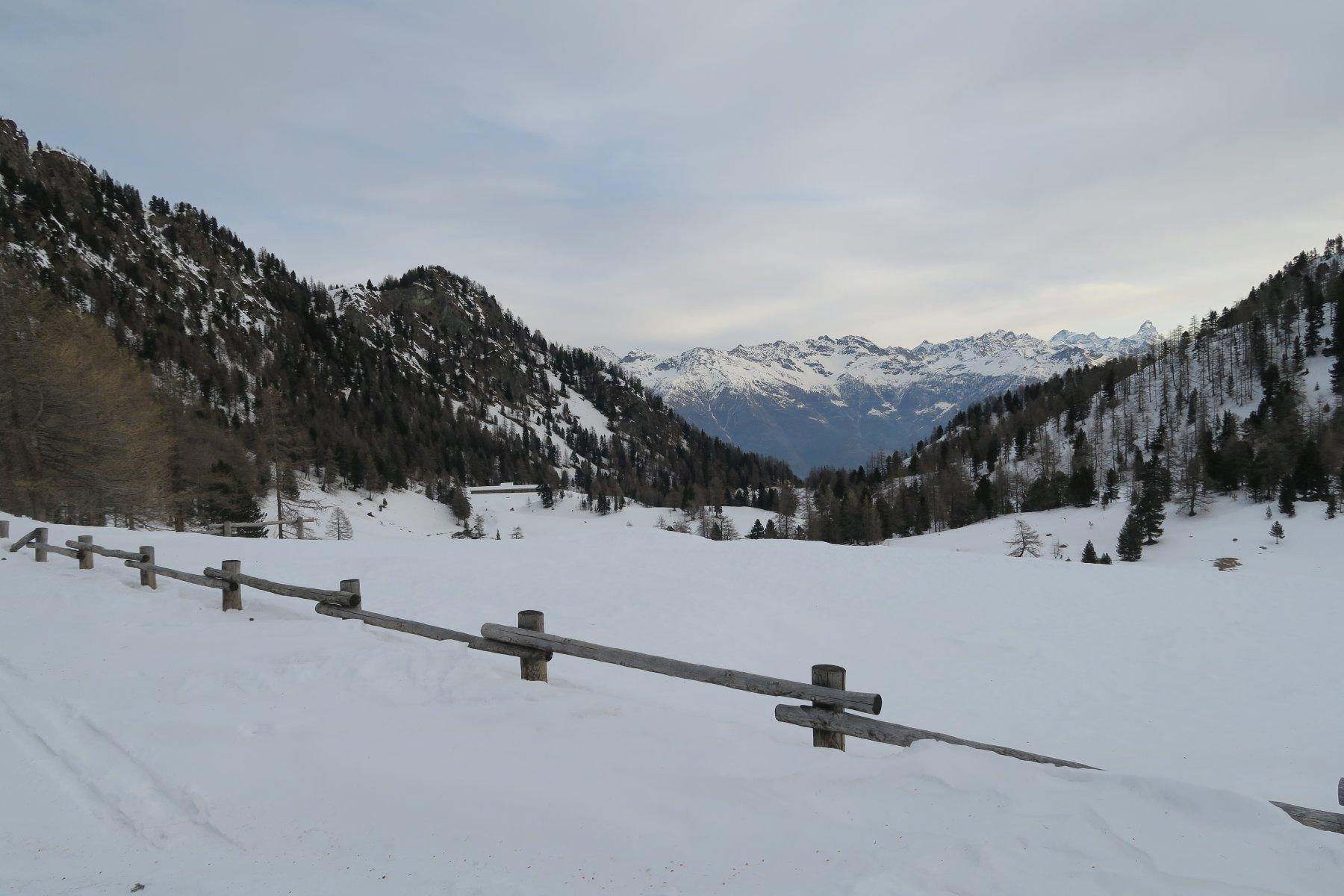 a sinistra il Colle di Plan Fenetre ed in basso l'alpeggio dove al momento conviene scendere per evitare gli svalangamenti