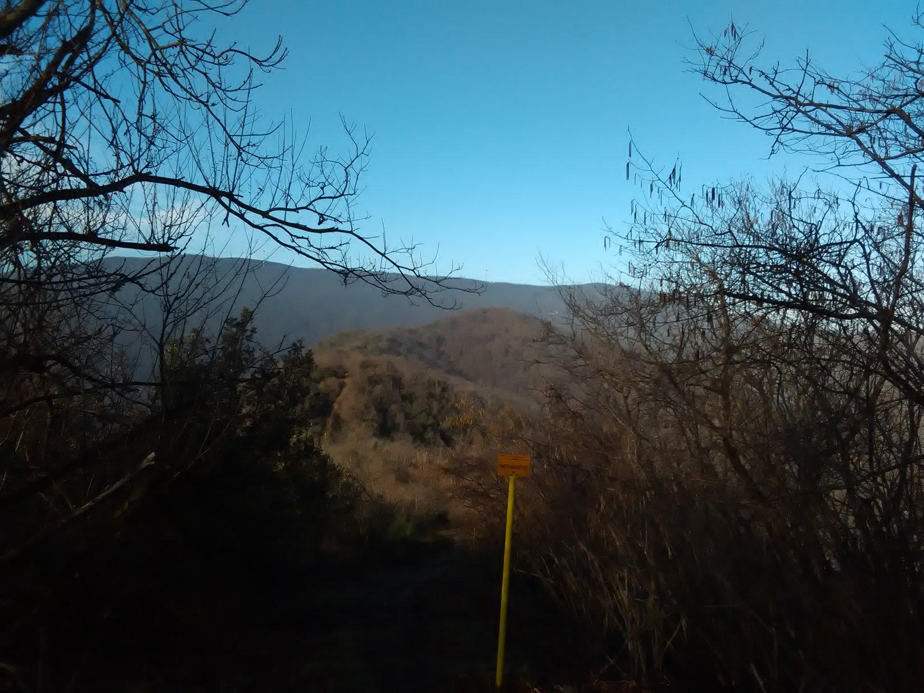 Baraccone (Monte) da Altare per Quiliano e Roviasca, giro 2020-02-11