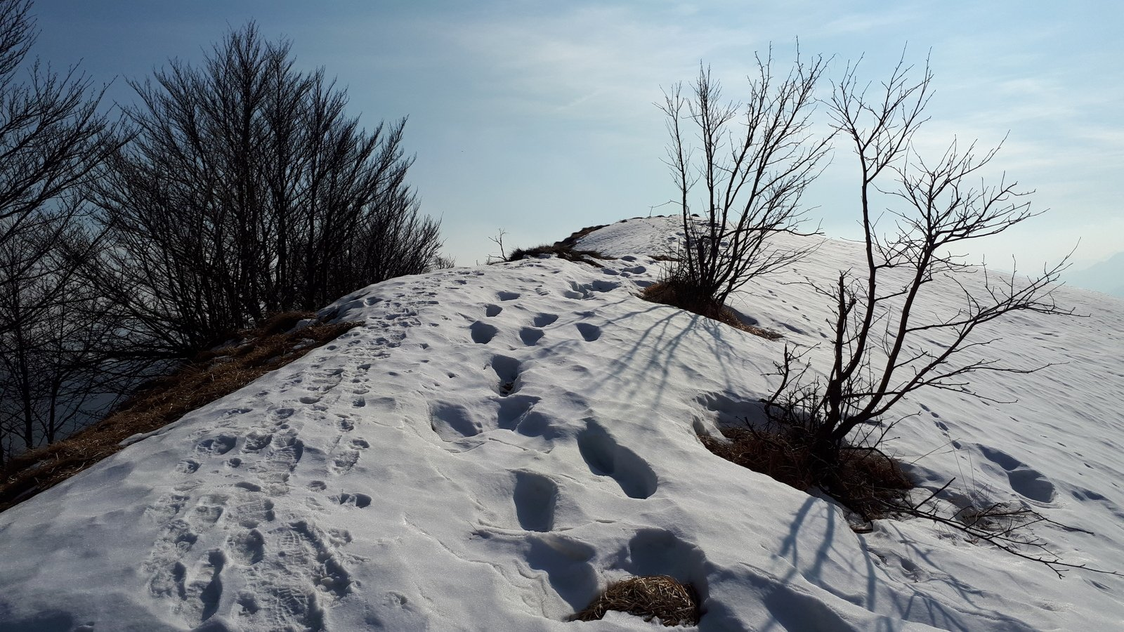 Ultimi passi per il Monte Camossaro