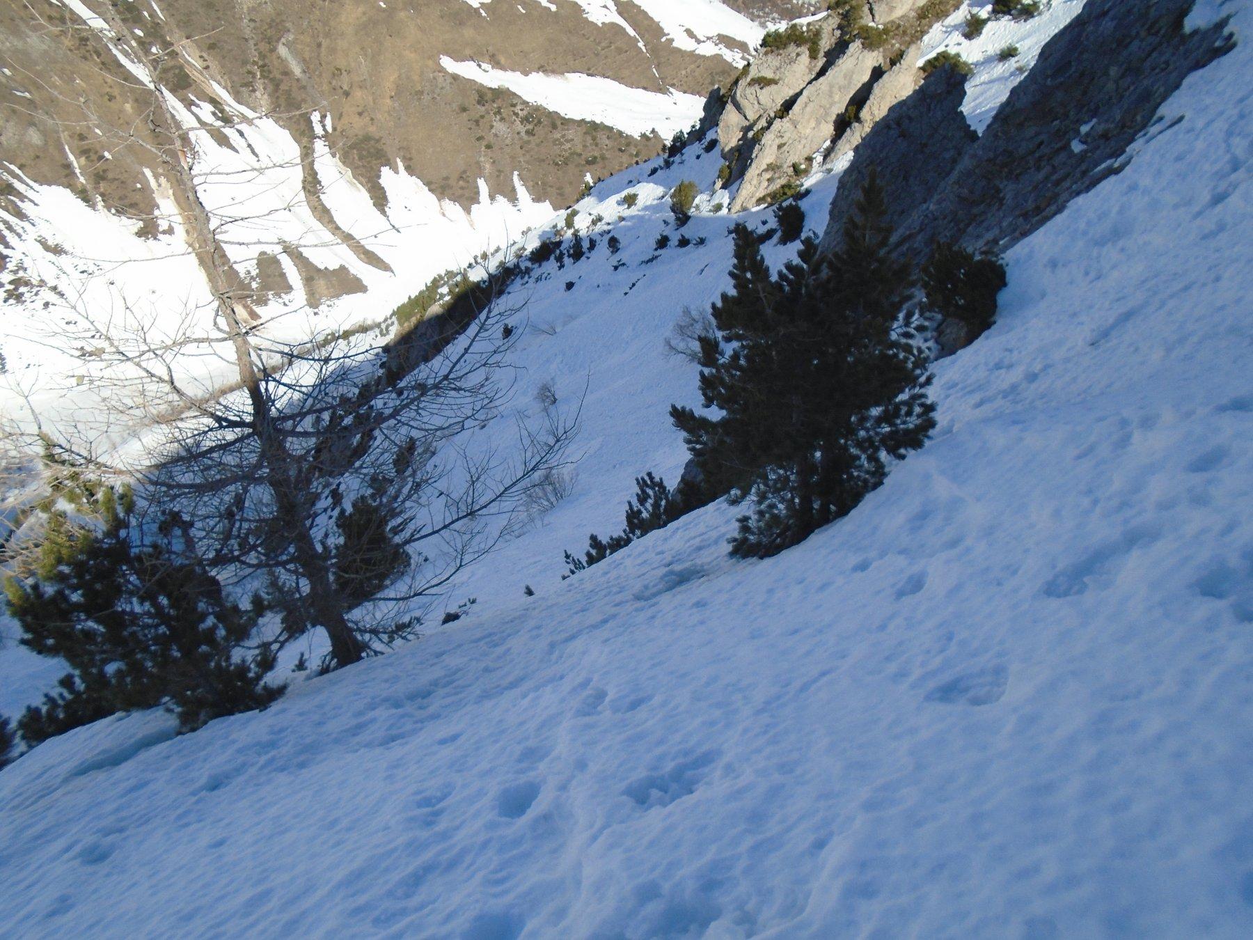 Il pendio sommitale NO (45 gradi bandati, tutto su neve)