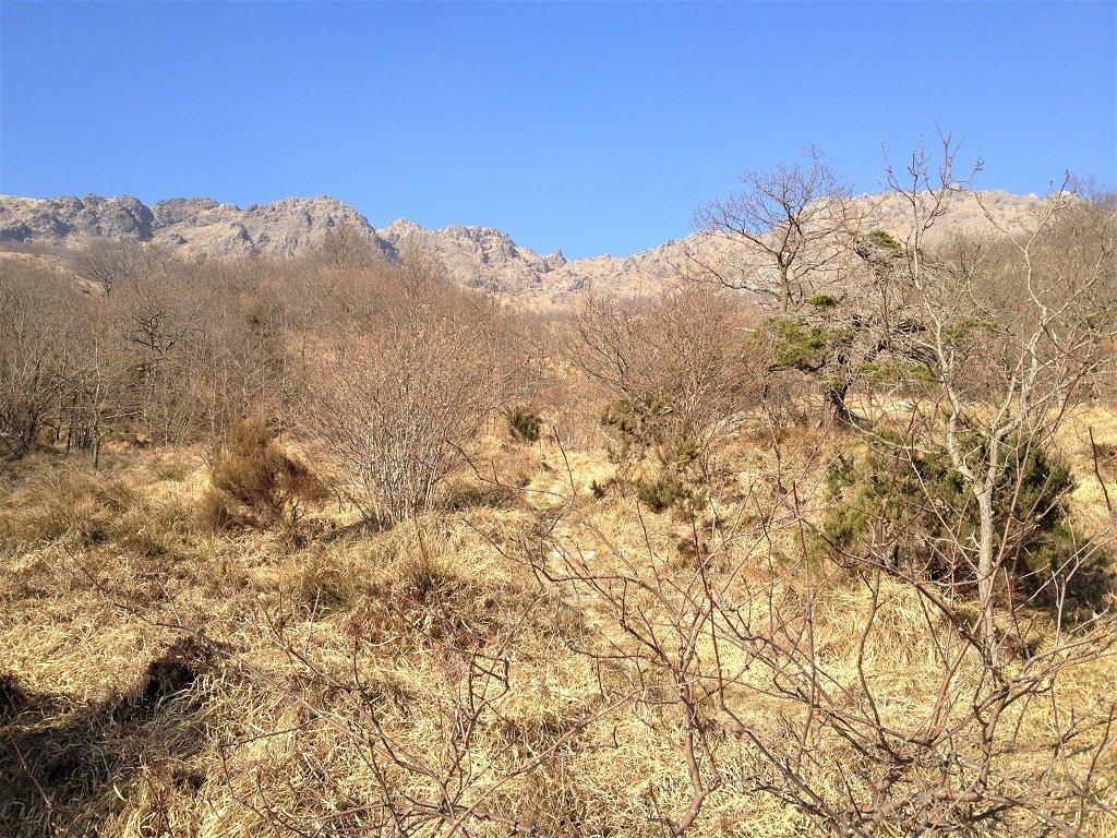 La lunga bastionata dell'Alta Via vista da presso la fonte Montebello