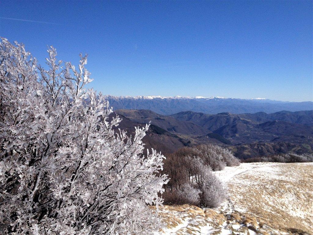 Uno sguardo a est dal monte Gottero