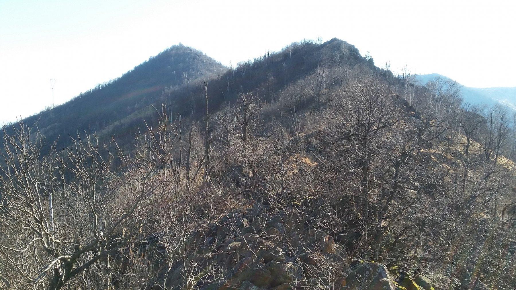 Dietro la punta Masuan il Monte Bernard