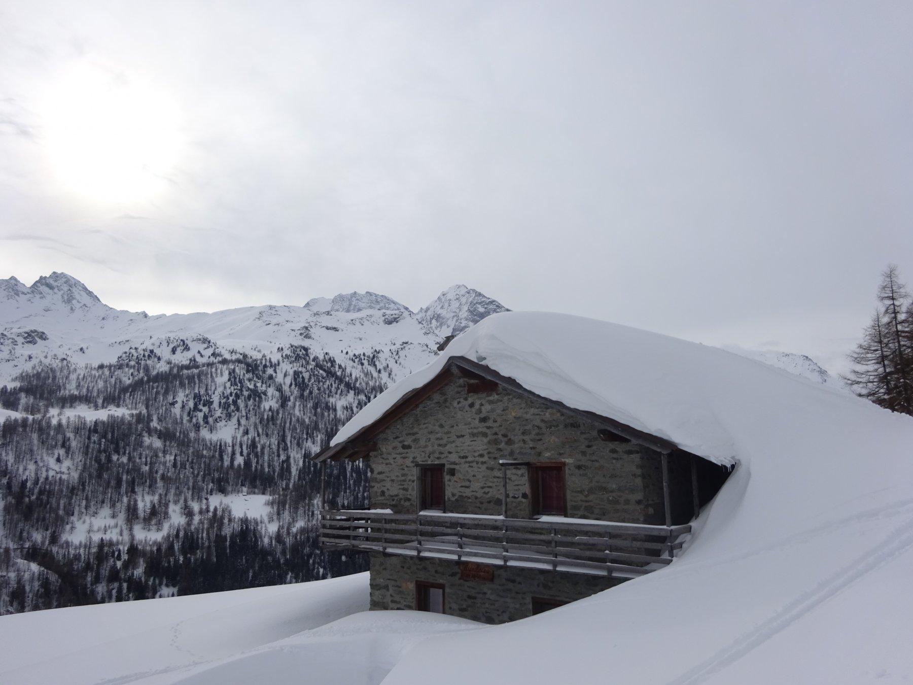 L' Alpe Botza 1950 m