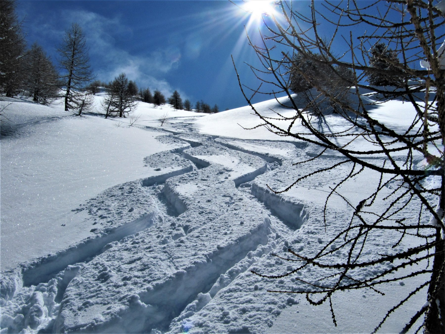 Neve da soddisfazione !!