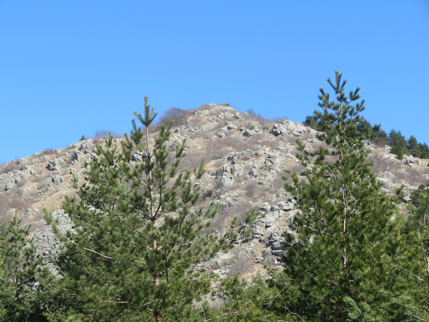 il versante sud del M. Cavalli