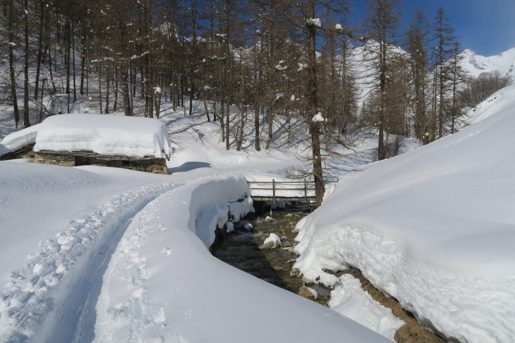 tanta neve anche in basso