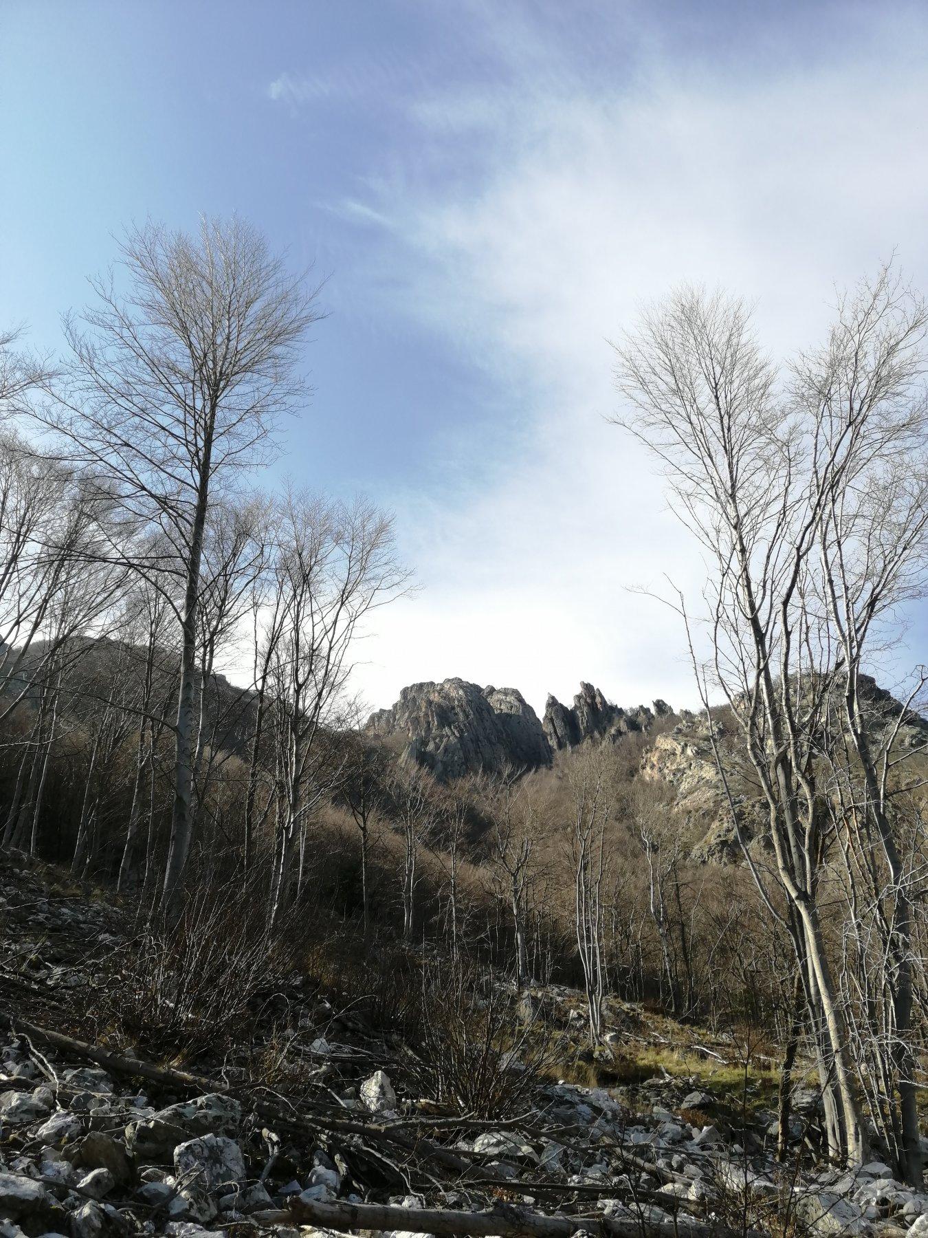 Agnellino (Bric dell') Cresta Est o Costa dei Balzi Rossi 2020-03-08