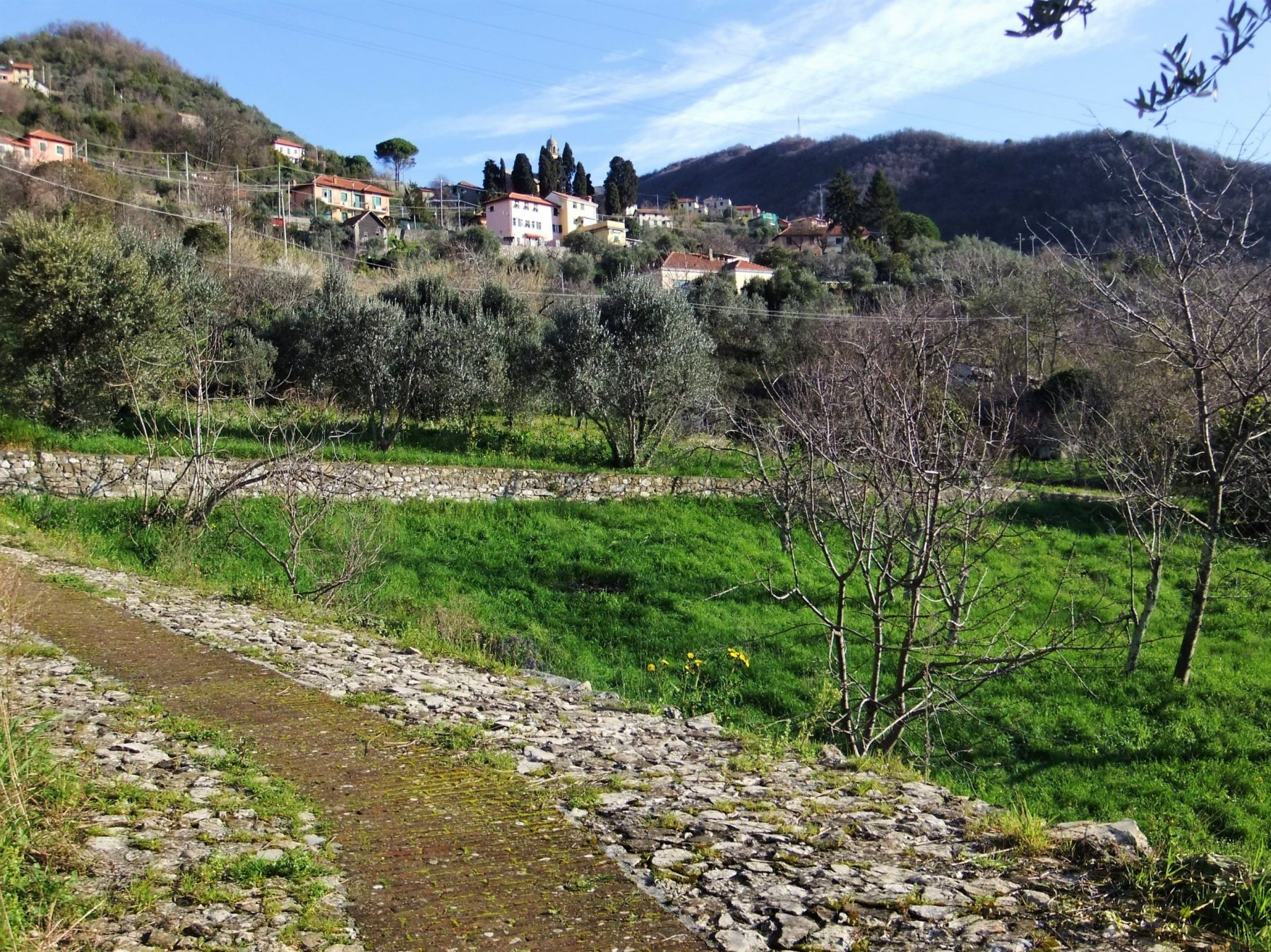 Mattonata verso San Martino di Struppa