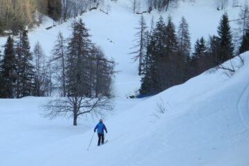 Quasi giù alla pista da fondo   I   On est presque à la piste de ski de fond   I   Almost down at the cross-country skiing track   I   Fast runter bis zur Langlaufloipe   I   Casi ya abajo en la pista de fondo
