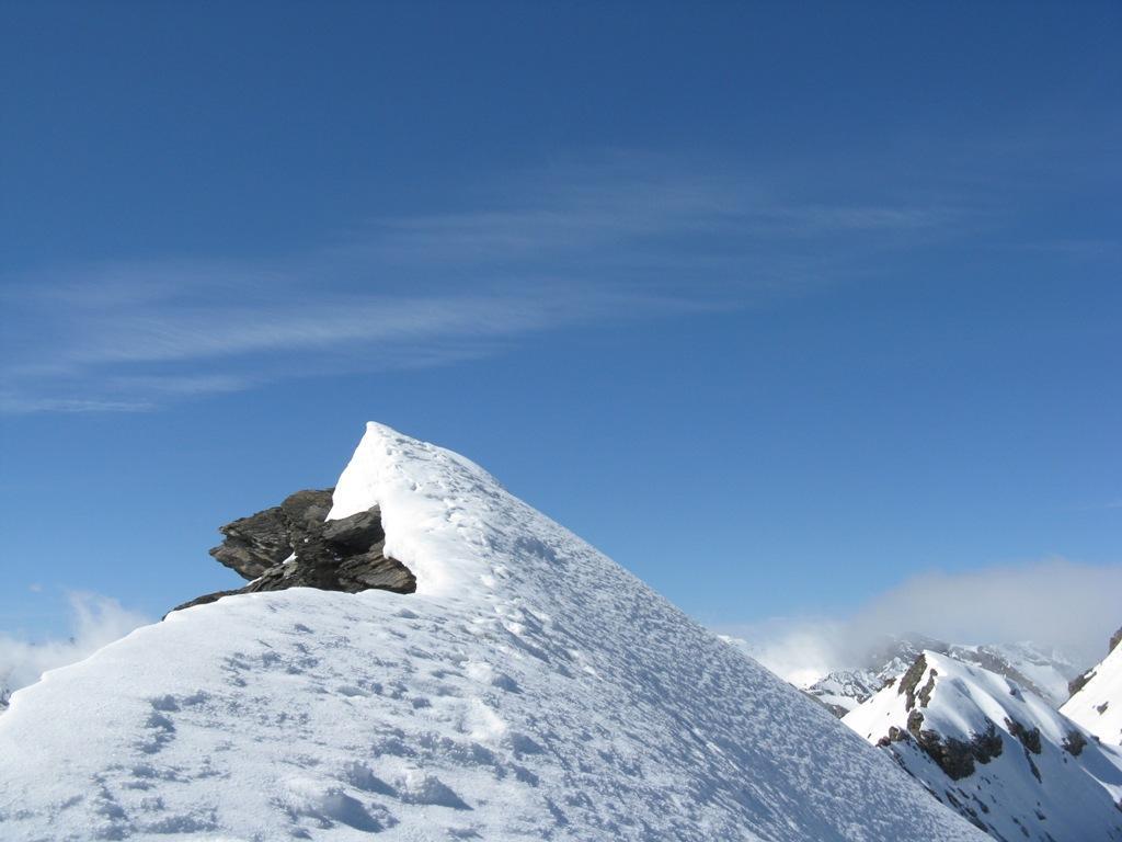 cresta nevosa in cima
