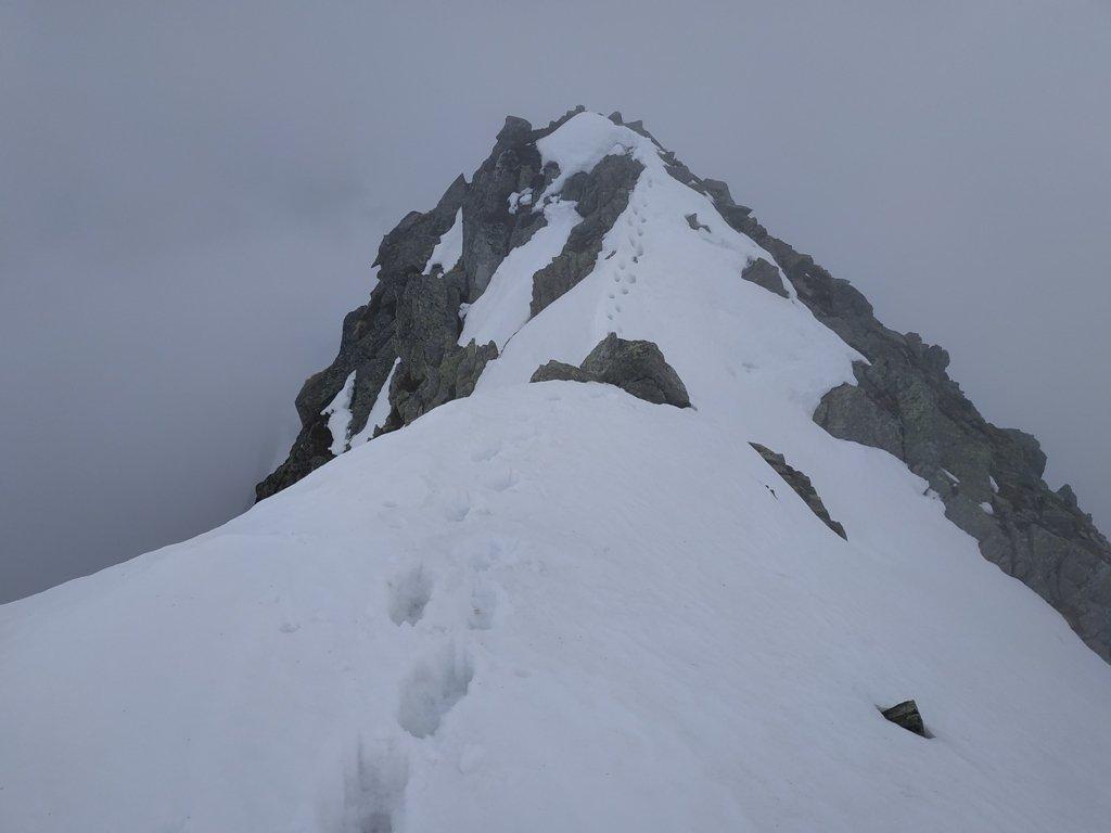 Cresta verso la cima, ci giungo quasi per sbaglio nella nebbia totale !
