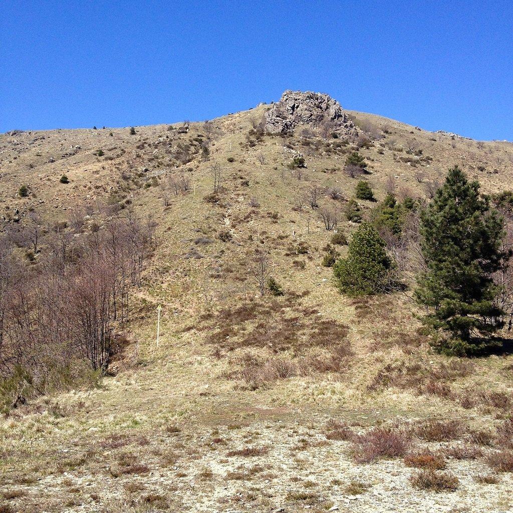 Poggio (Monte) Dalla Colla di Prà per Monte Penello e Monte Vesulina 2020-05-07