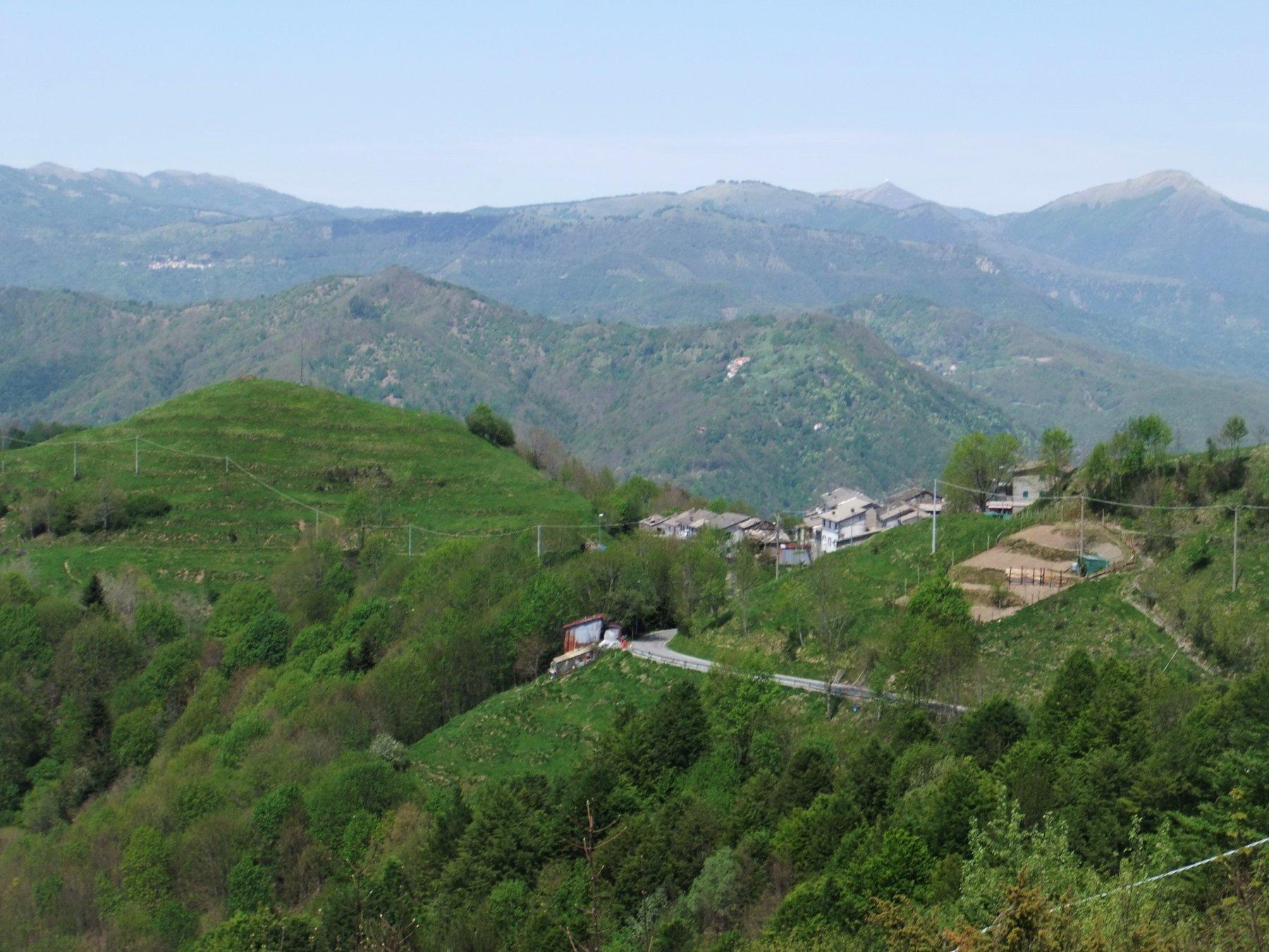 Collere (Monte) e Monte Posasso da Barbagelata 2020-05-09