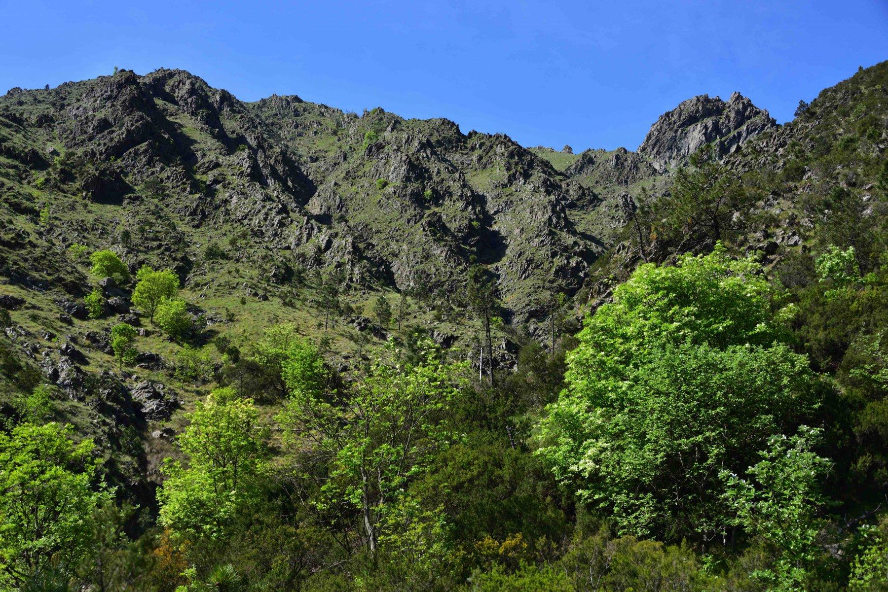 Il valloncello sotto la Punta del Corno