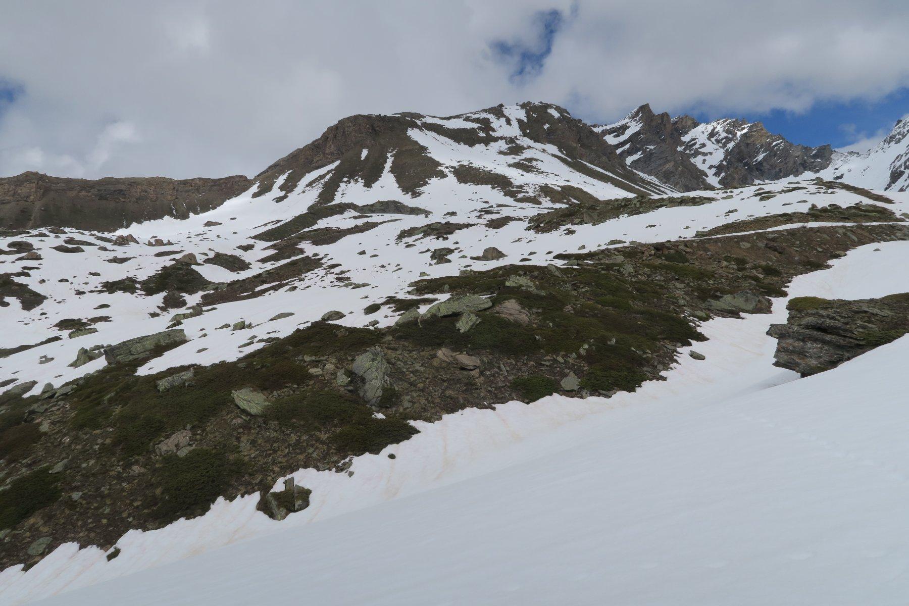 al rientro sul ripido pendio erboso la neve fresca si era squagliata