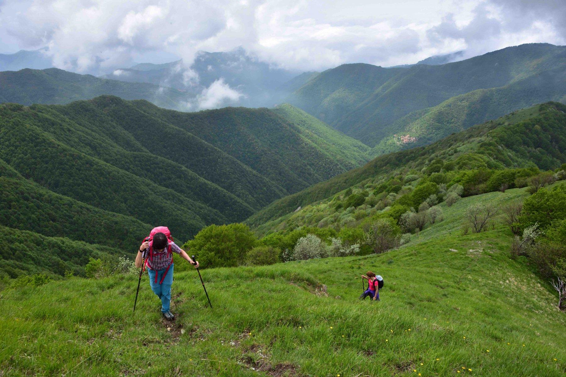 Salendo verso il M.Antola per la cresta Est