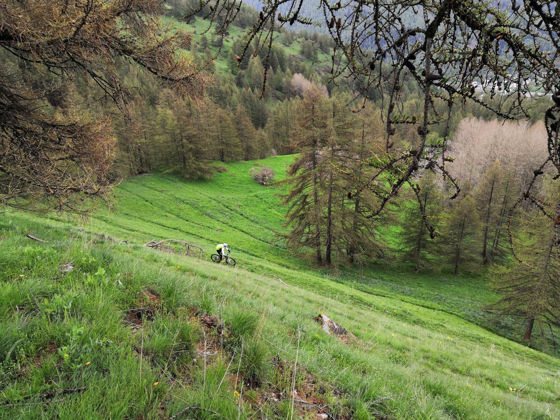 Genevris (Monte) e Punta di Moncrons da Pragelato per l'Alpe Giarasson e il Colle Costa Piana 2020-05-17