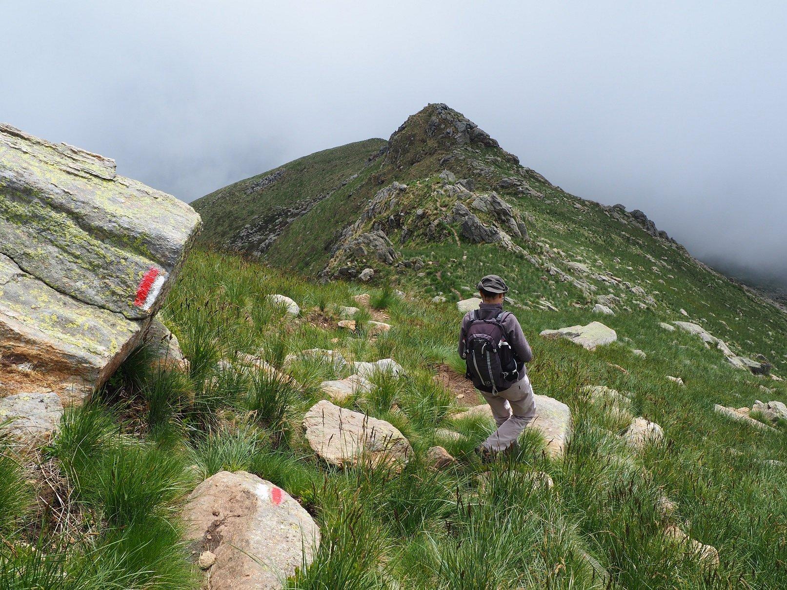 In discesa nel tratto tra la cima e l'alpeggio.