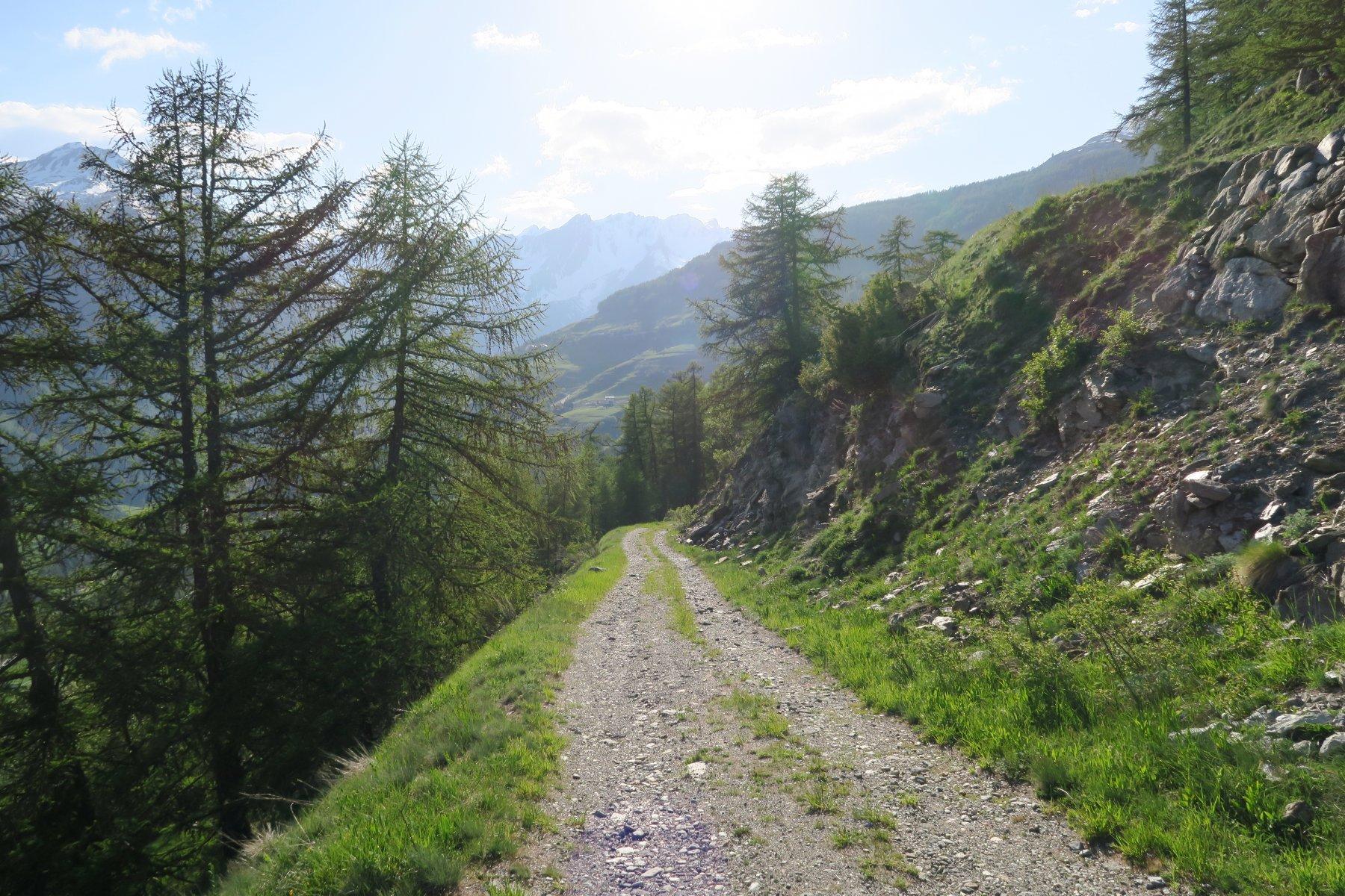 la strada poderale per rientrare ad Eternod