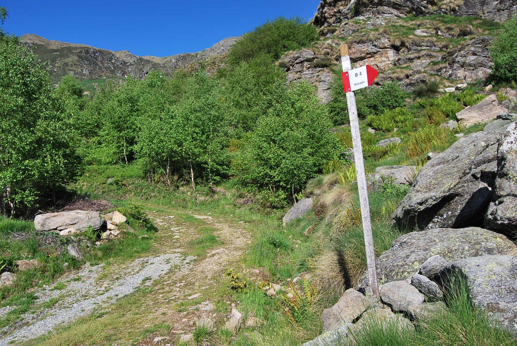 Stacco del B4 dalla sterrata, destra salendo: scorciatoia che porta a Steveglio ma che l'erba nasconde