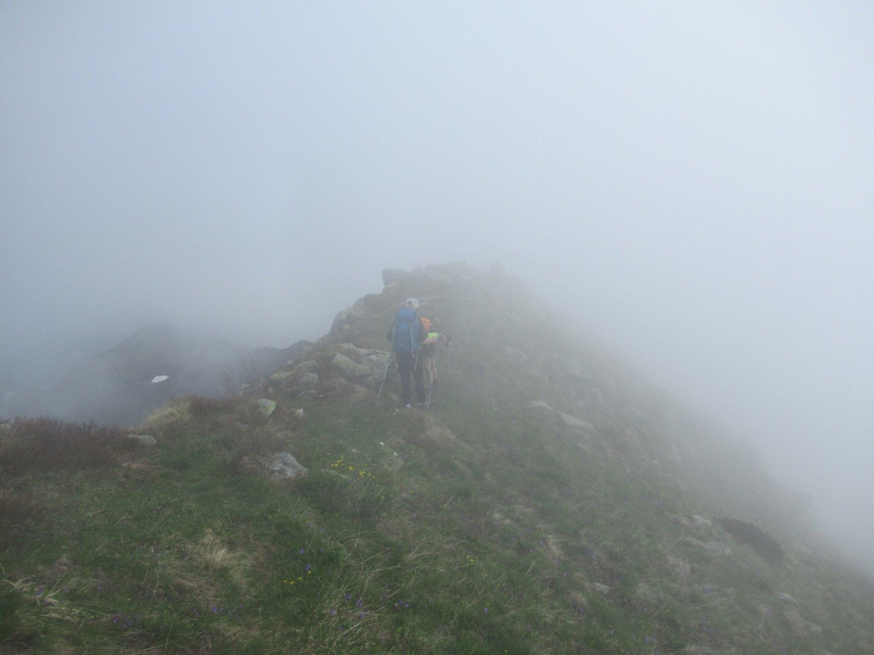 Rientriamo nella nebbia