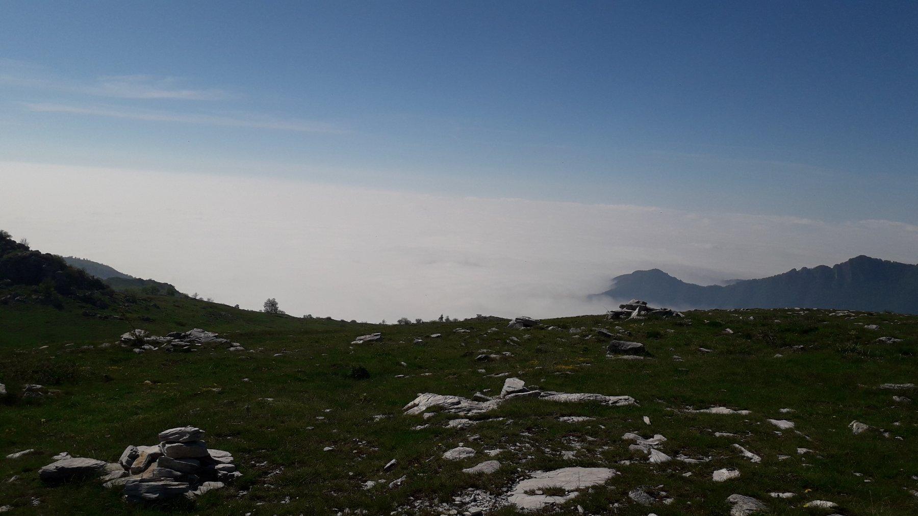 Armetta (Monte) da Ormea 2020-05-23