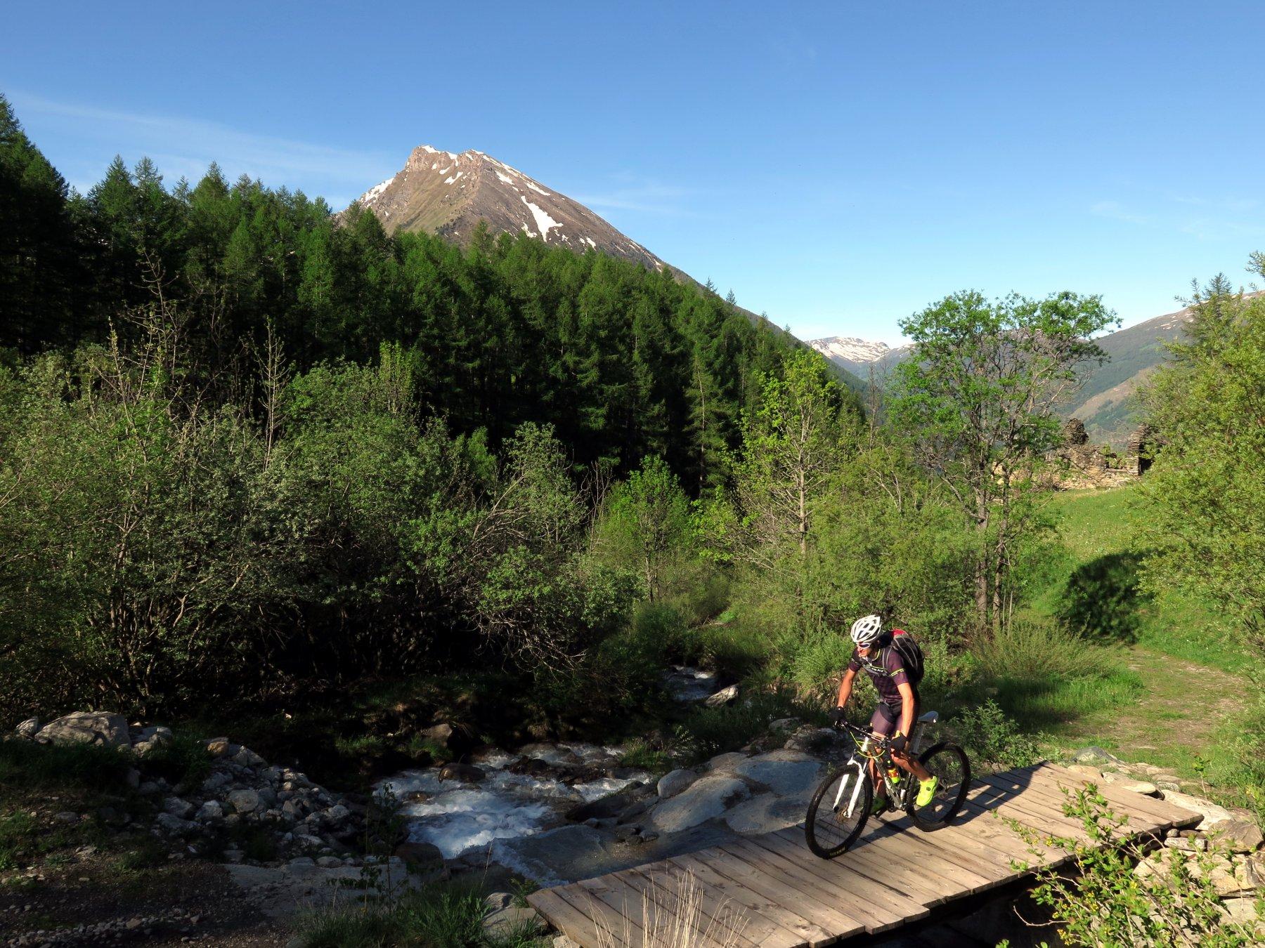 Salendo al Pian dell'Alpe