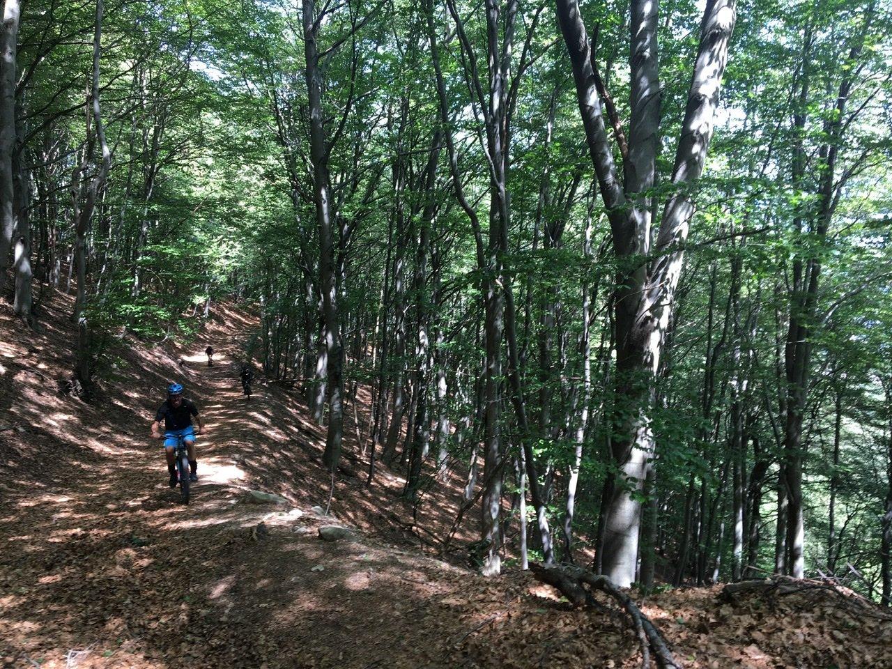 Ultimo tratto di salita, rampe dure nel bosco