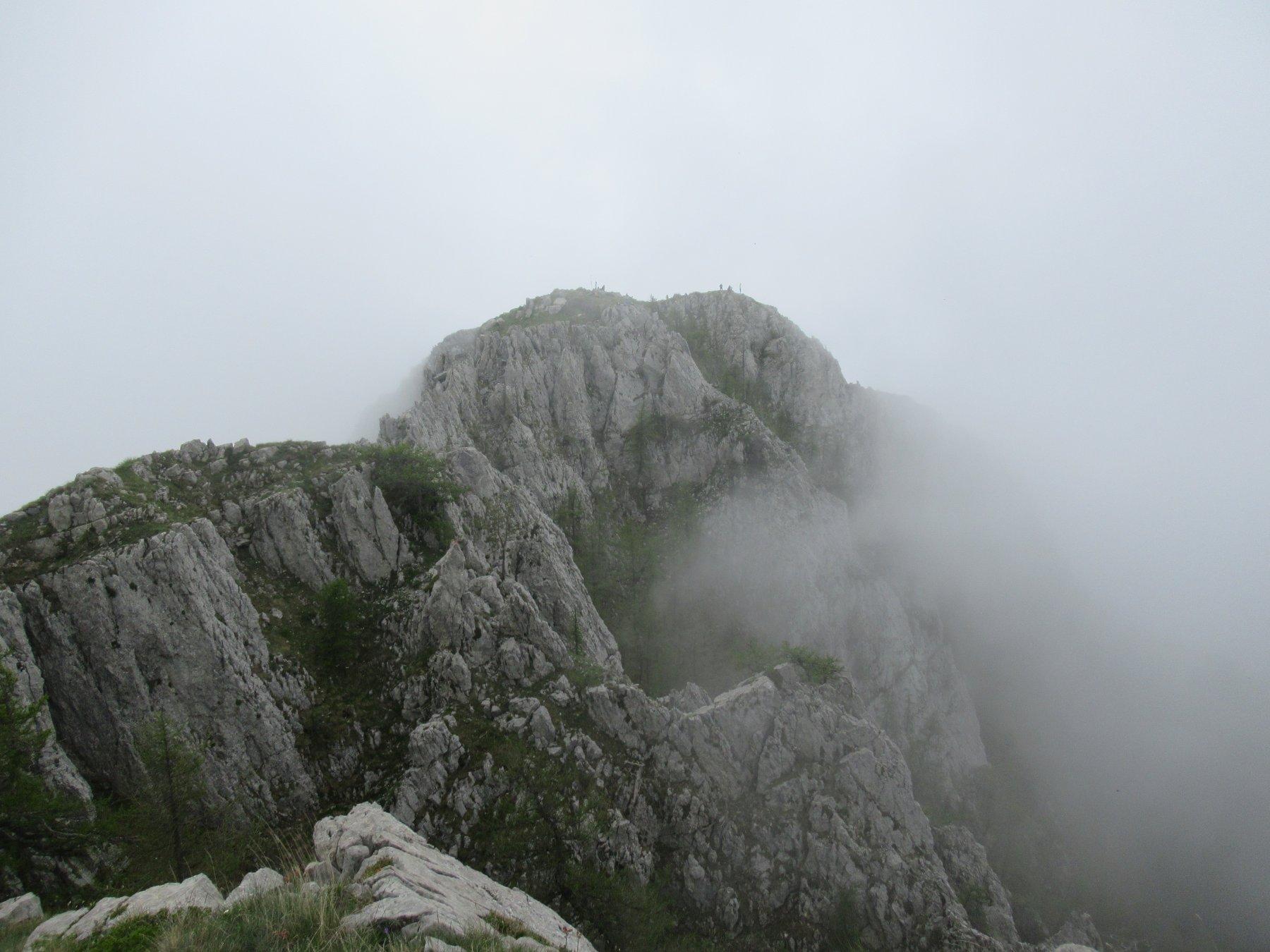 La cresta per la cima del Toraggio.