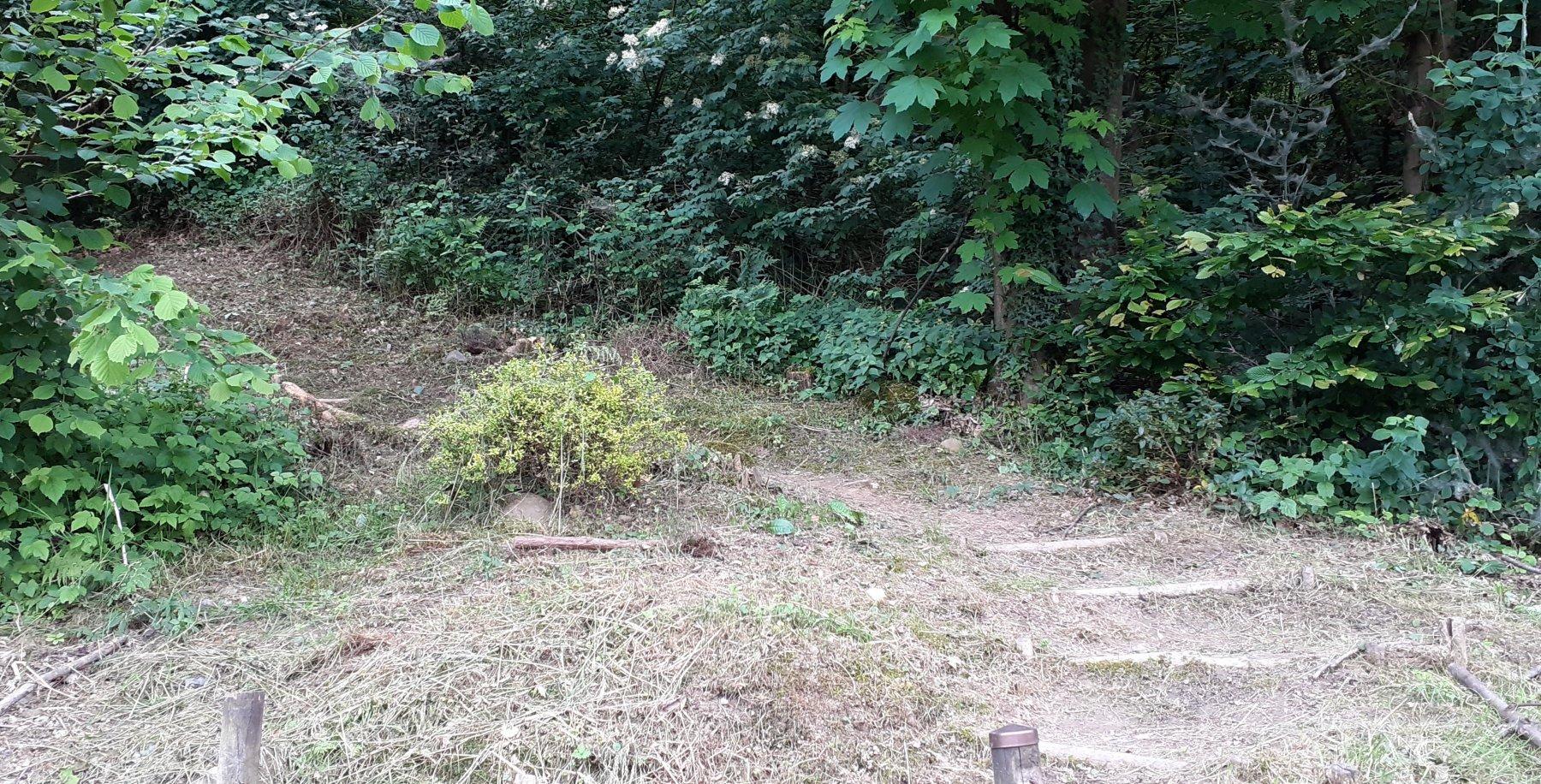 I gradini del tratto iniziale originario, ormai ripristinato
