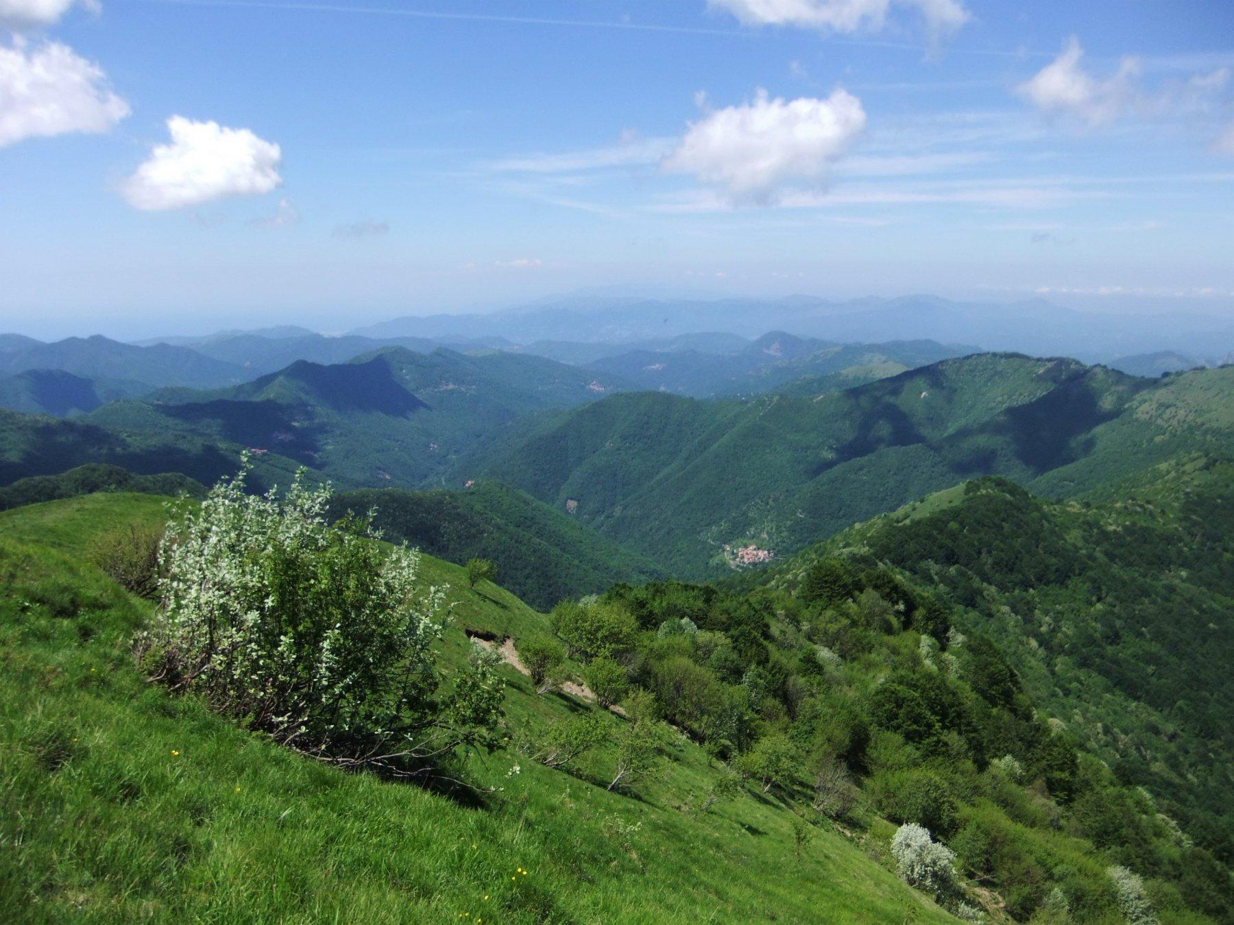 Verdi panorami dalla vetta