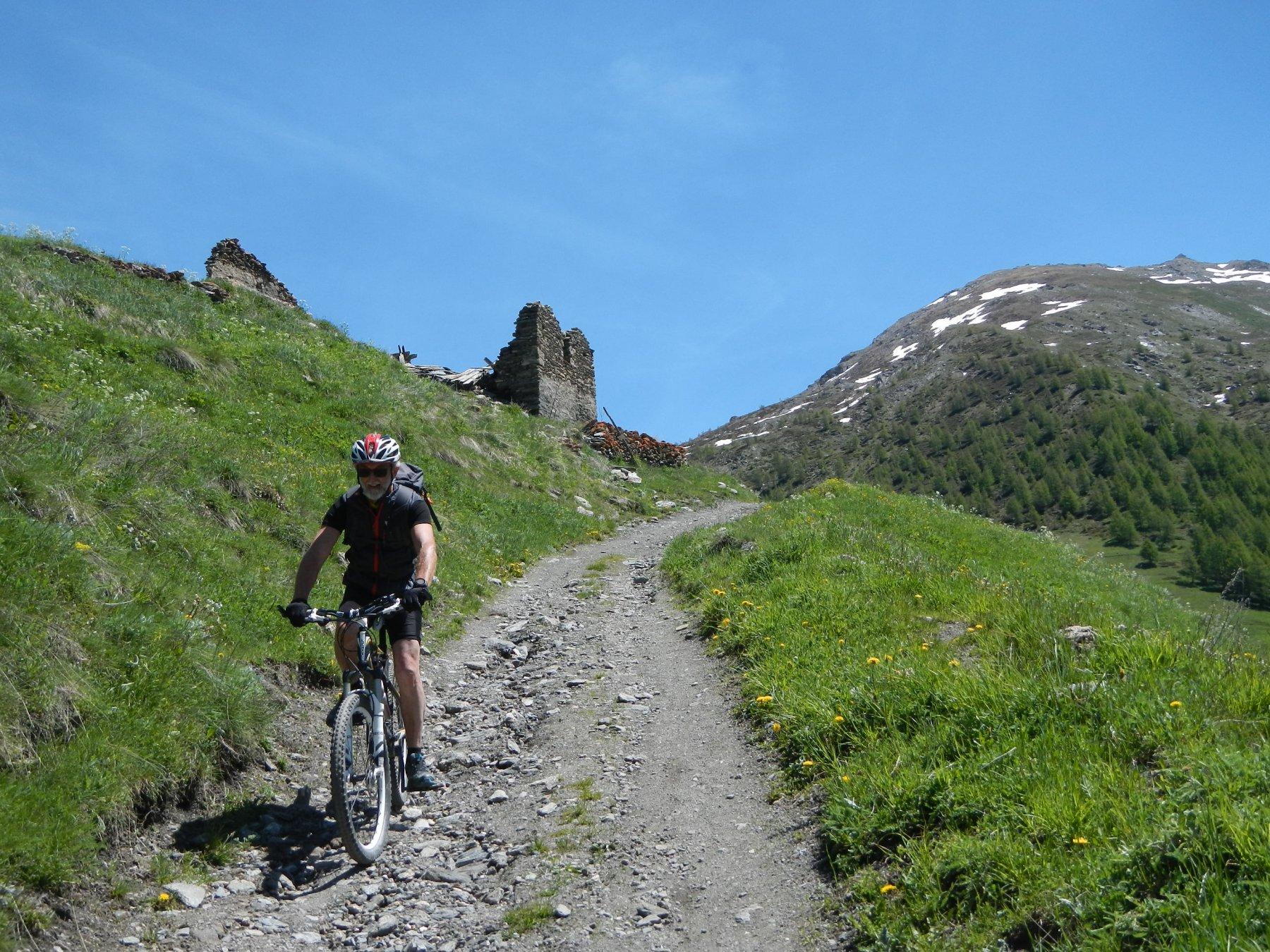 sentiero di discesa dall'Alpe Plane