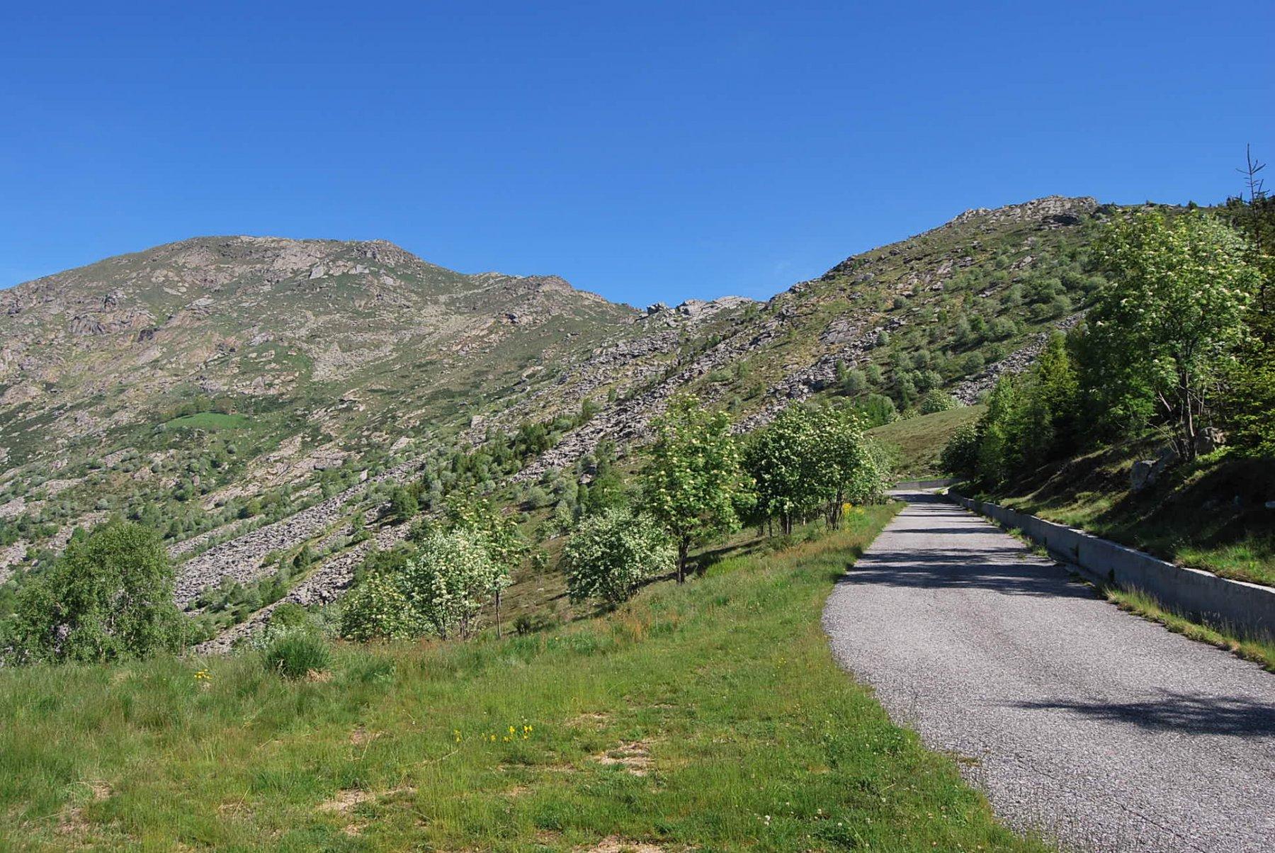 Le Colme e Monte Gregorio risalendo la strada alla ricerca del sentiero