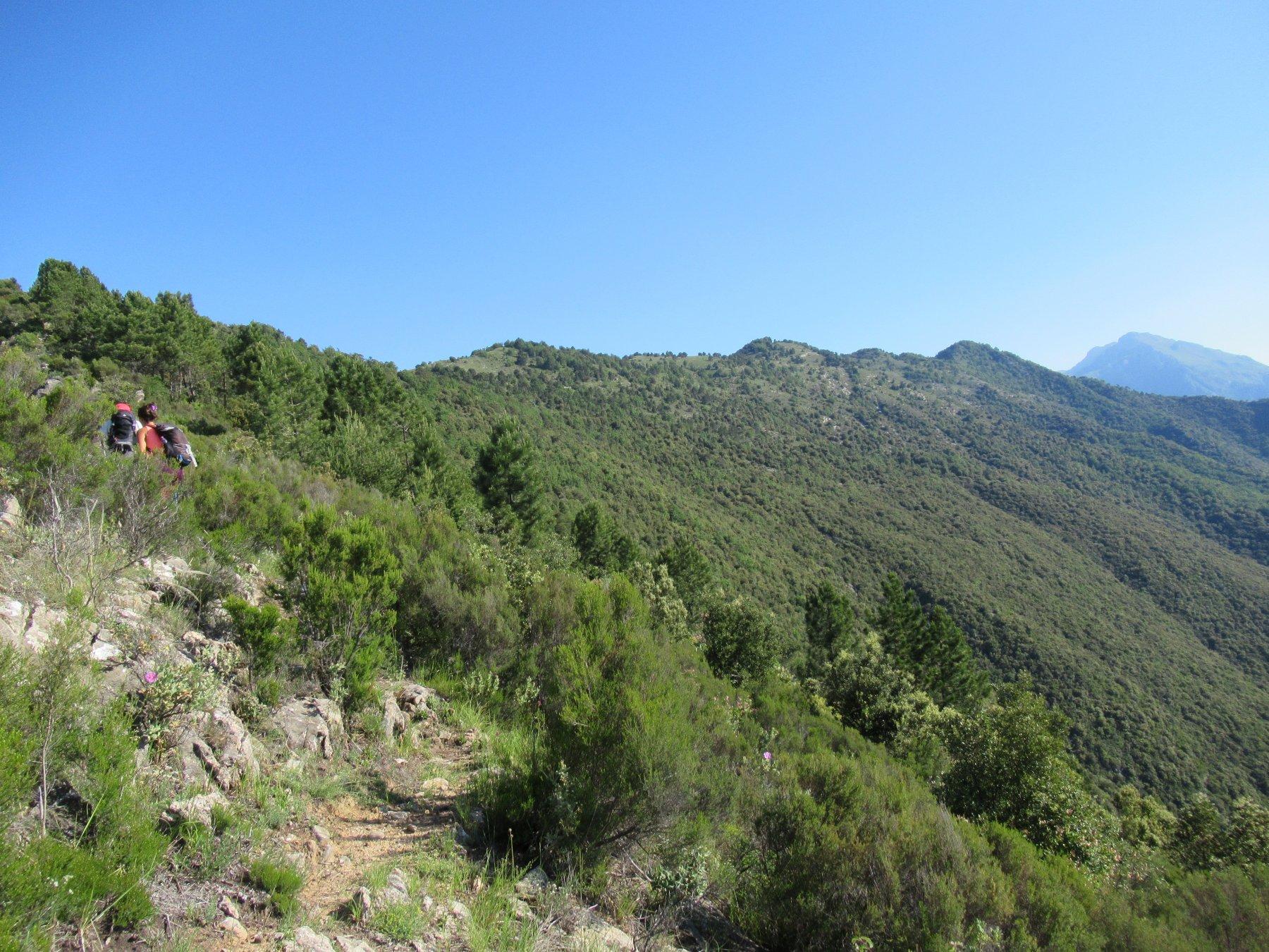 Salita al Monte Terca con dorsale di salita per Gouta.