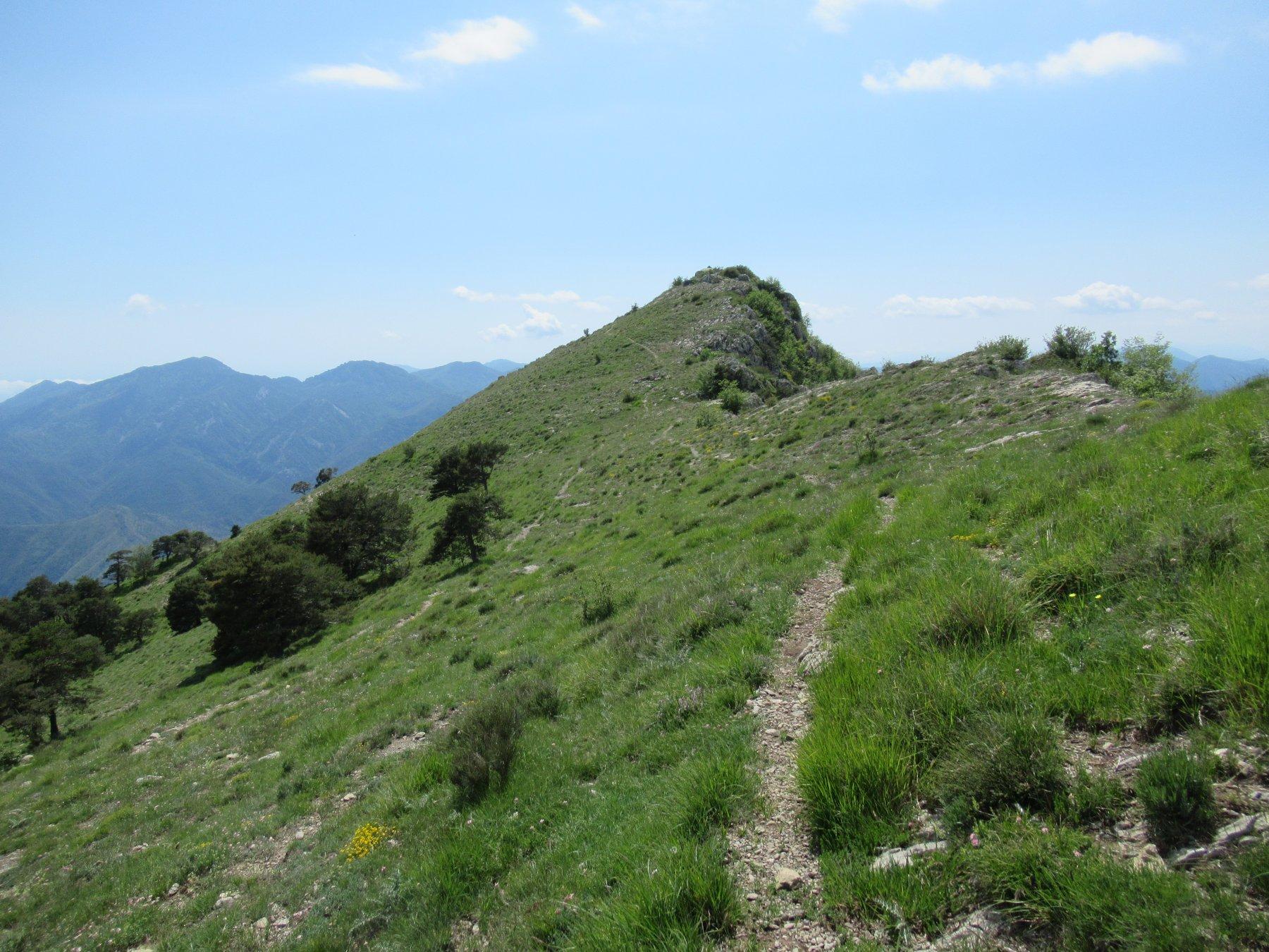 Arpette (l') da Rocchetta Nervina Anello Monte Terca, Sella di Gouta, Tete d'Alpe e Roche Forquin 2020-05-28