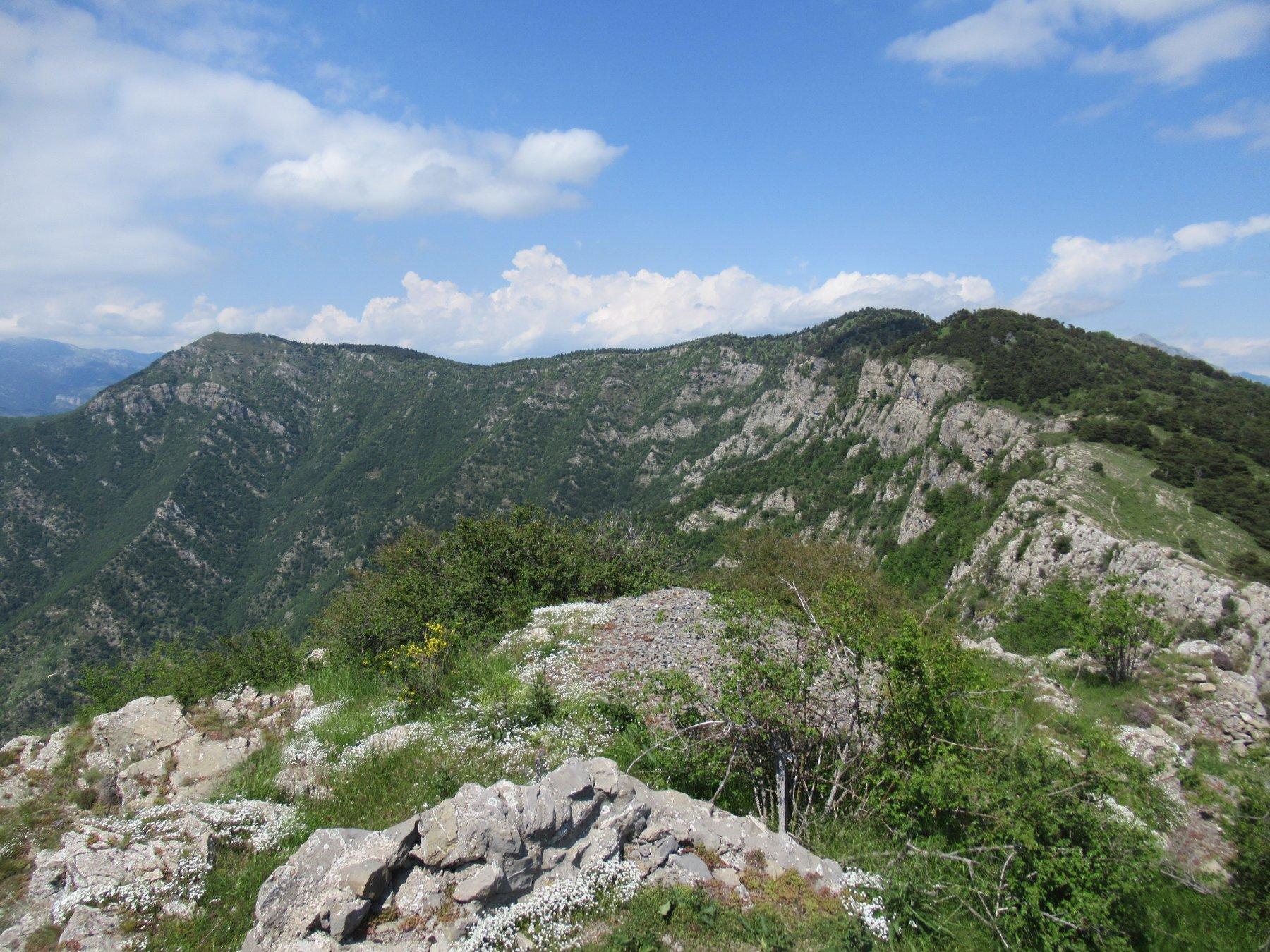 L'Arpette e Tete d'Alpe dal Roche Forquin.