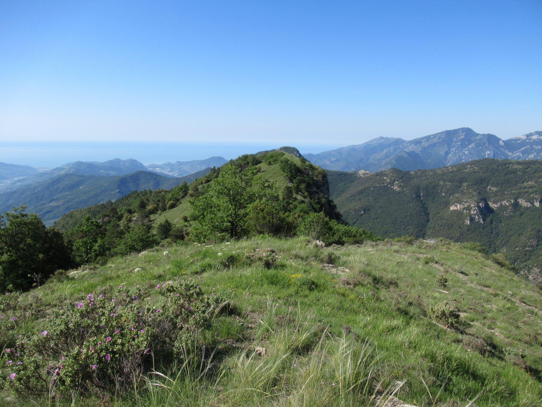 Il Monte Terca dalla dorsale per Gouta.