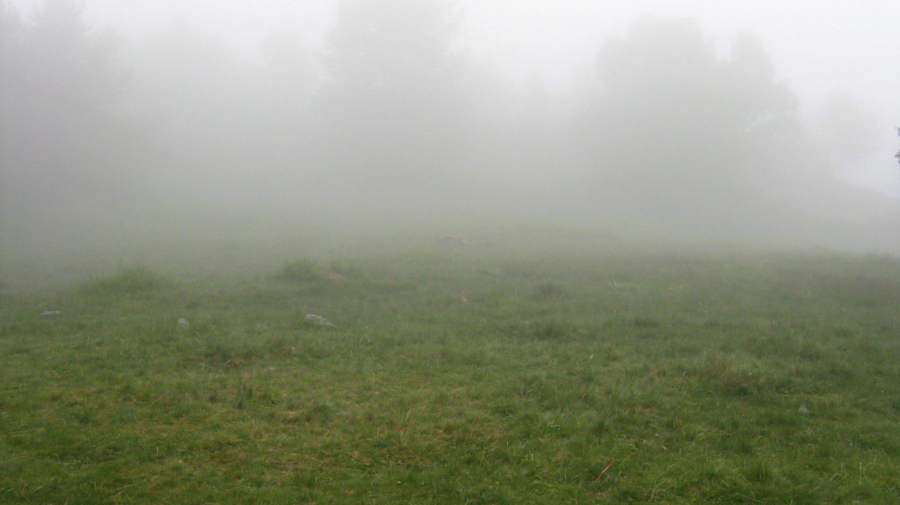 nebbia al Colle della Bassa