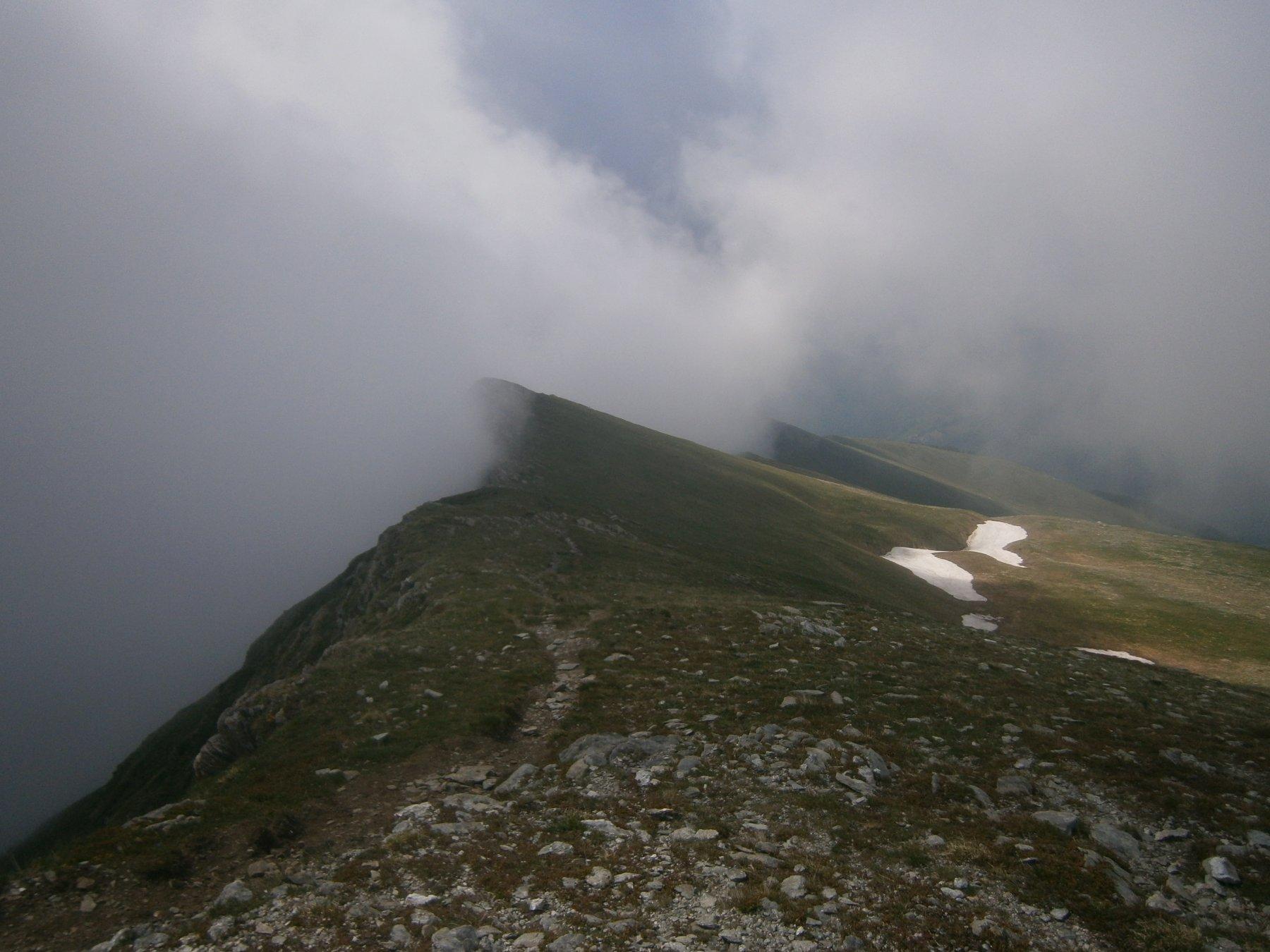 in discesa verso Madonna Alpina