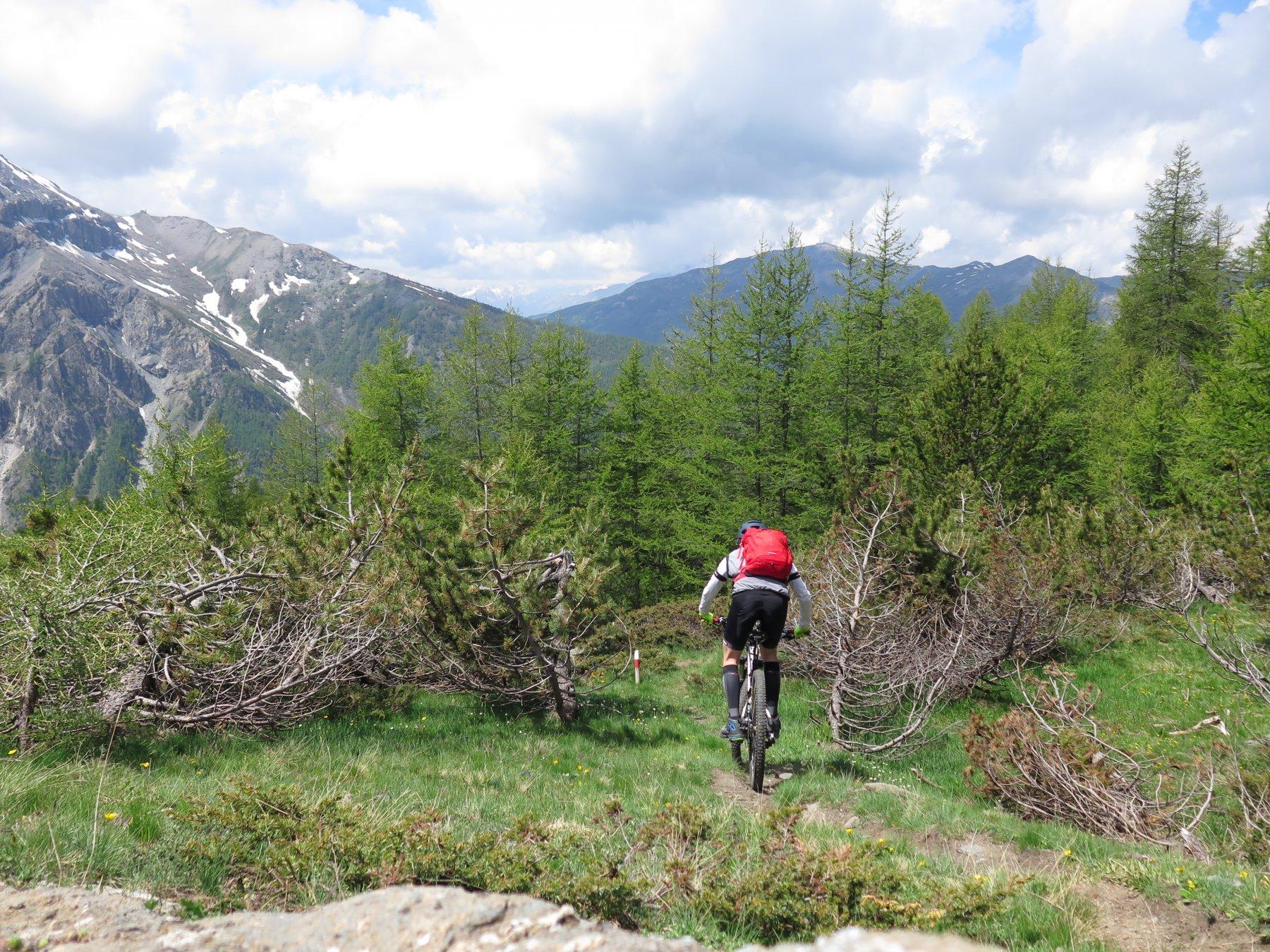 Morefreddo (Monte) da Pragelato per il Clot de la Soma e il Colle del Pis 2020-06-01