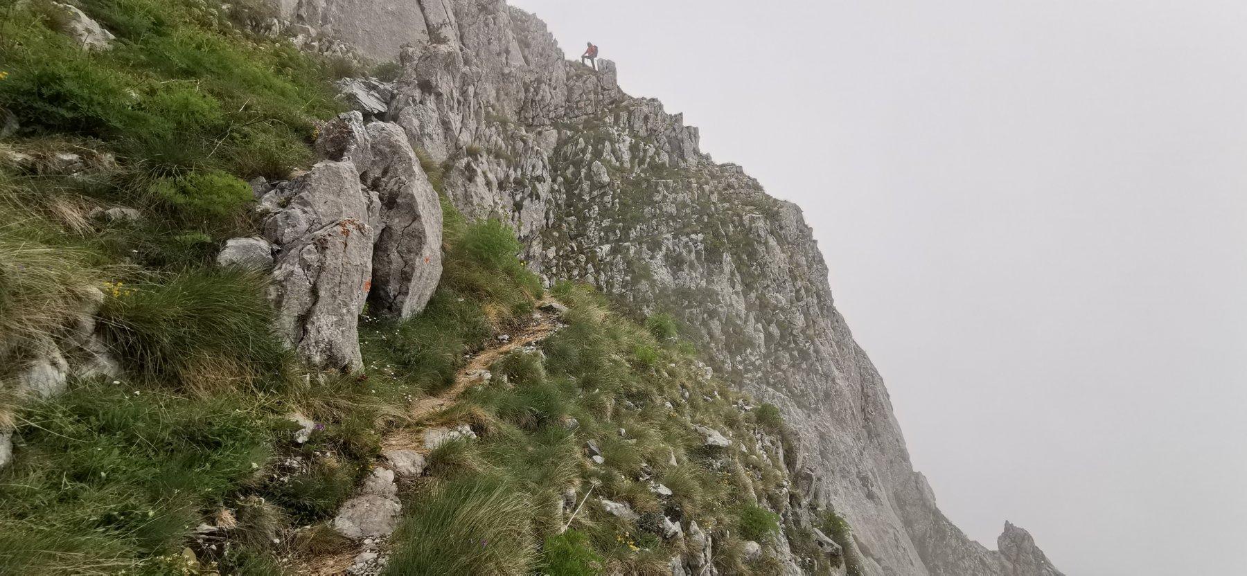 salendo verso la cima