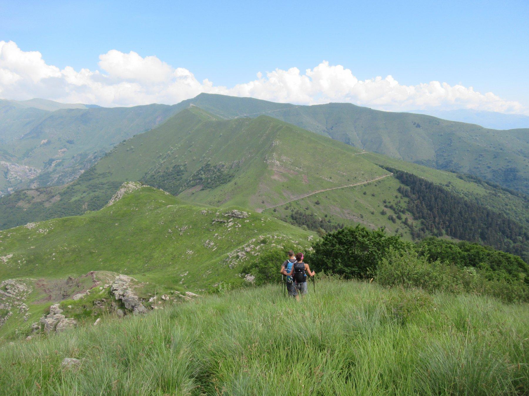 Il Monte Monega e la cresta sud dal Carmo di Brocchi.