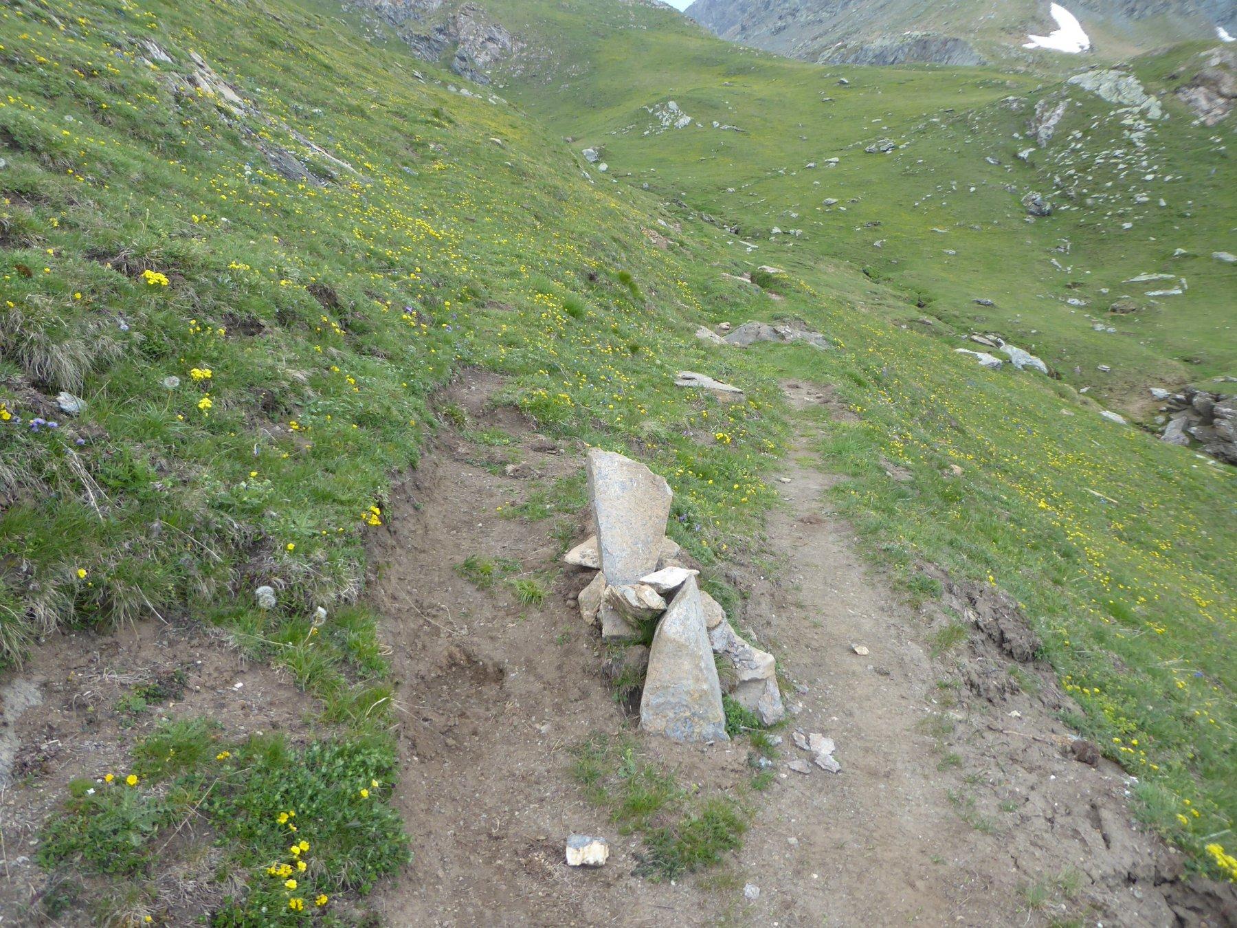 ometto al bivio (2225 metri)  prima del casotto
