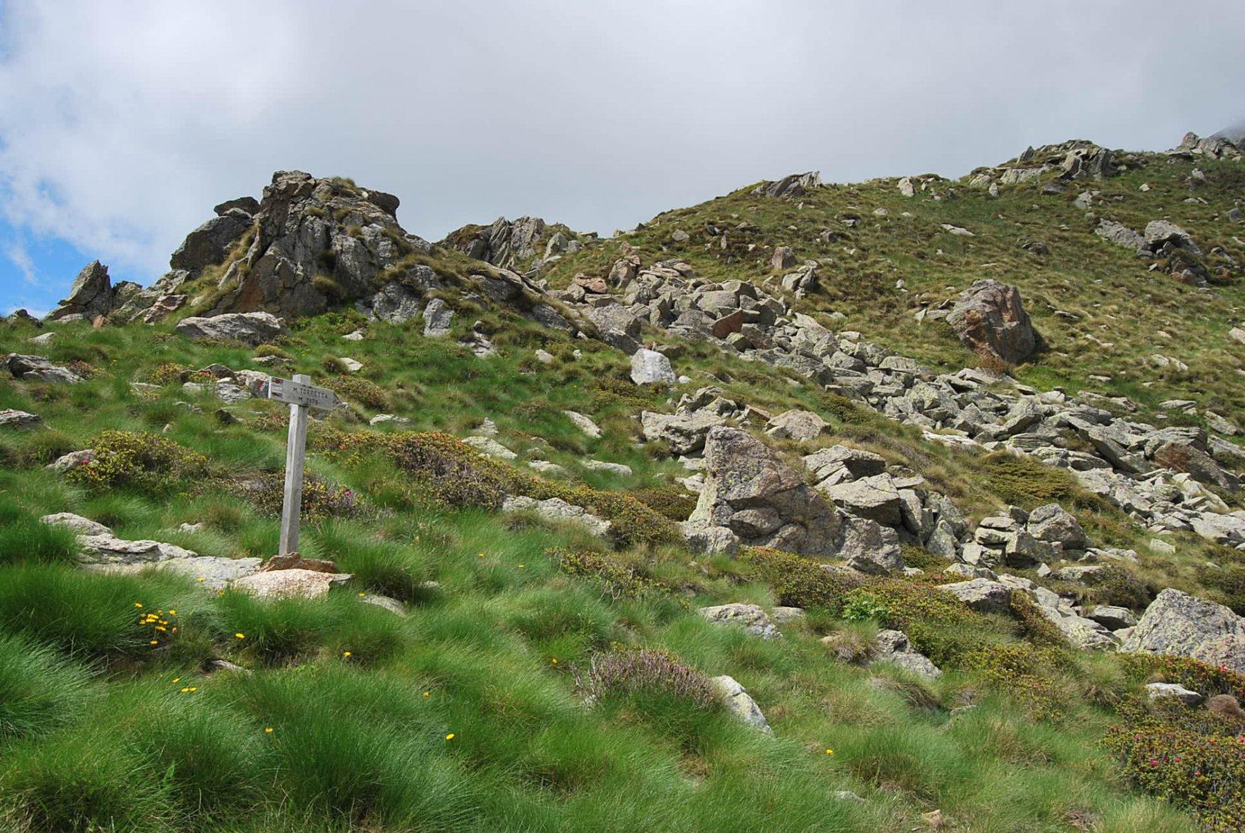 Il punto in cui il sentiero, partito dalla strada, sbarca in cresta e poi prosegue per La Torretta, come da indicazione
