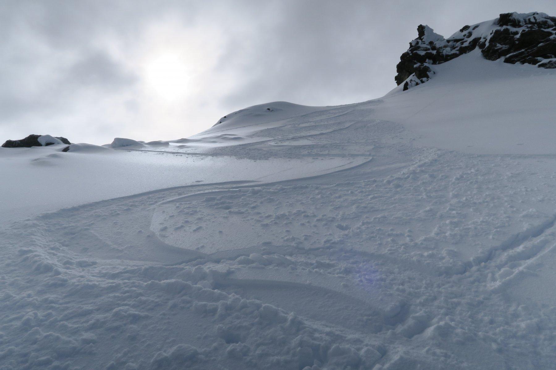 prime curve su splendida neve farinosa