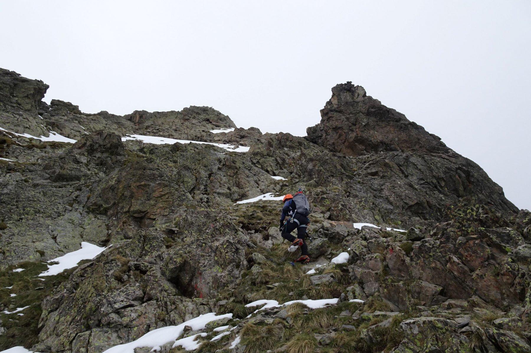Ultimo tratto di cresta verso la cima