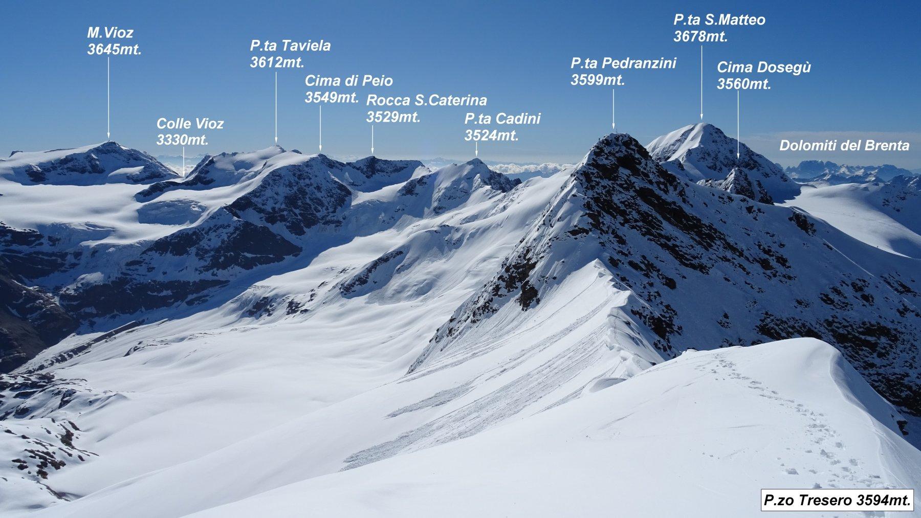Panorama dalla vetta del P.zo Tresero.