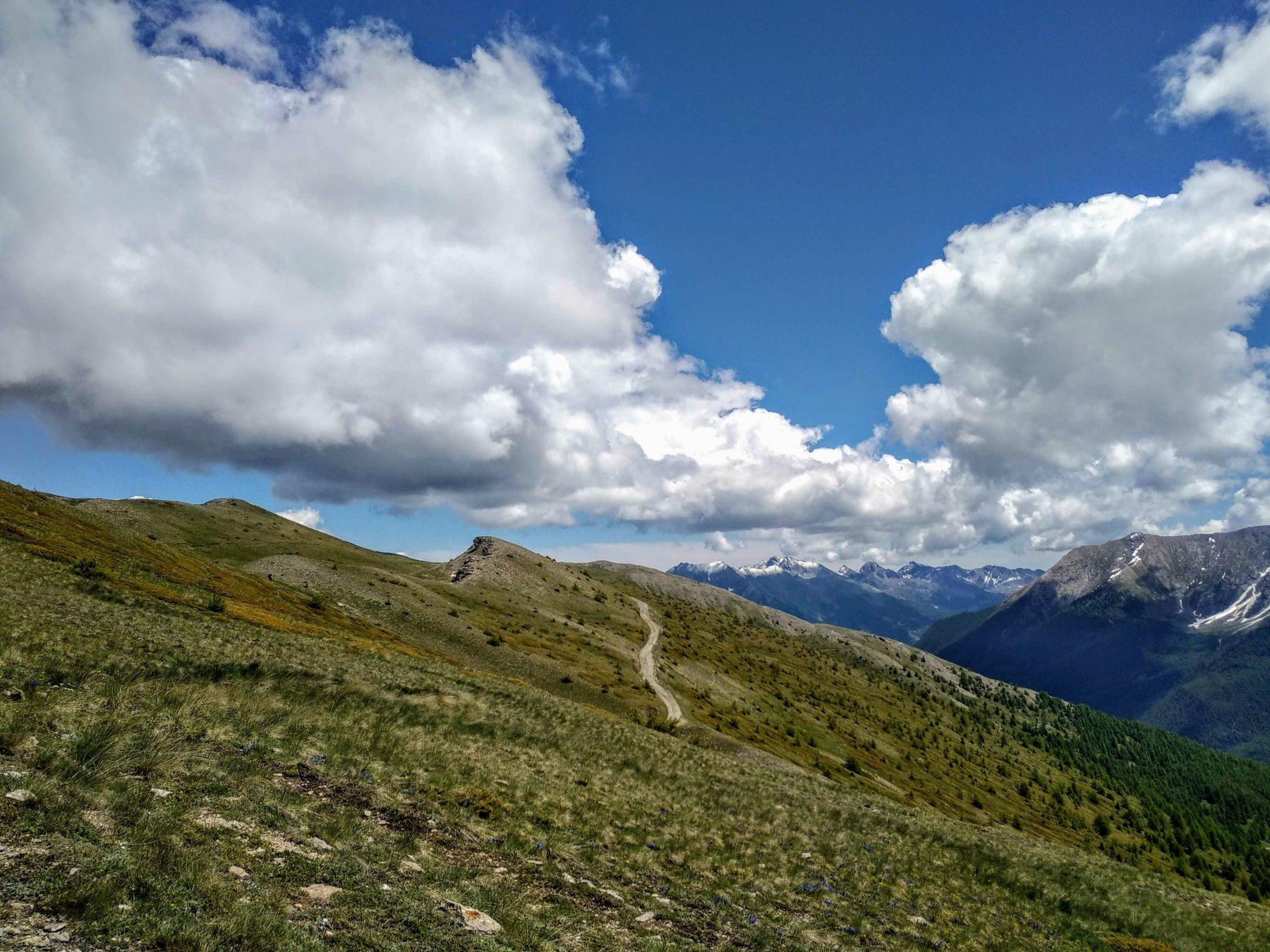 Genevris (Monte) e Punta di Moncrons da Allevè, anello per Col Bourget e Colle di Costapiana 2020-06-14