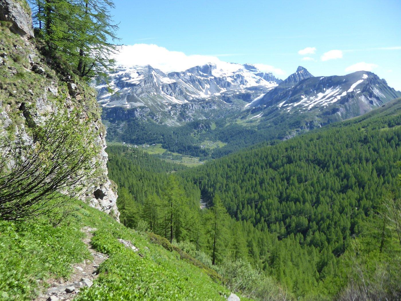La conca dell'Alpe Veglia dal sentiero ripido.